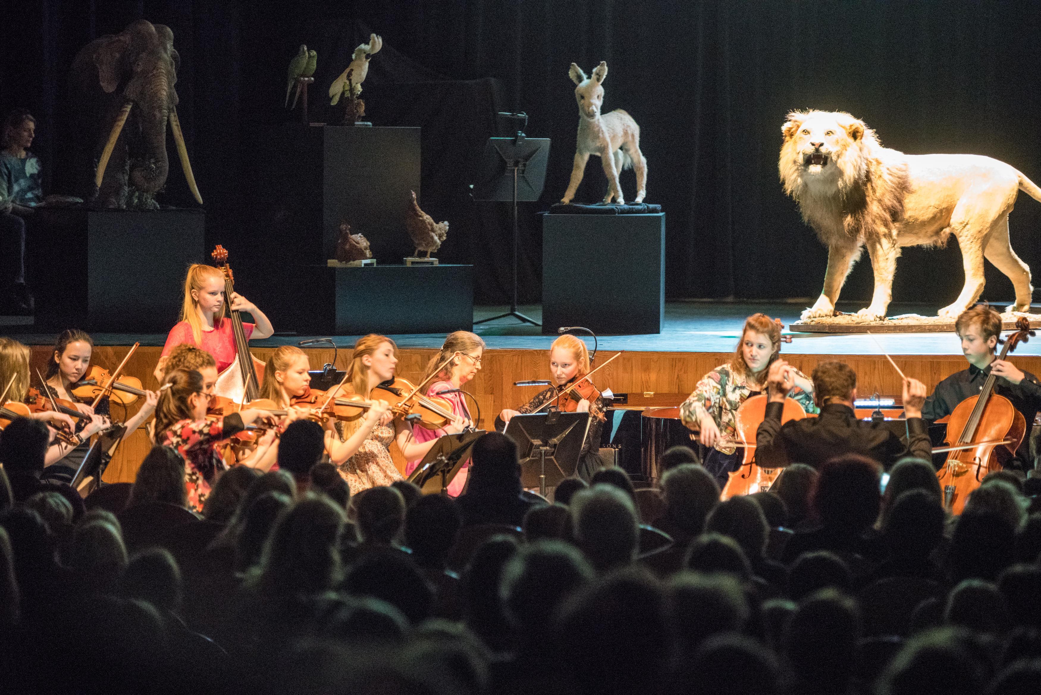 Dieren in plaats van musici op het podium