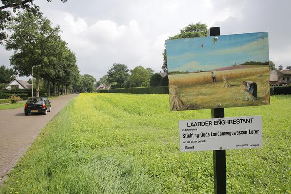 Stukje van Laarder Eng wordt parkeerterrein