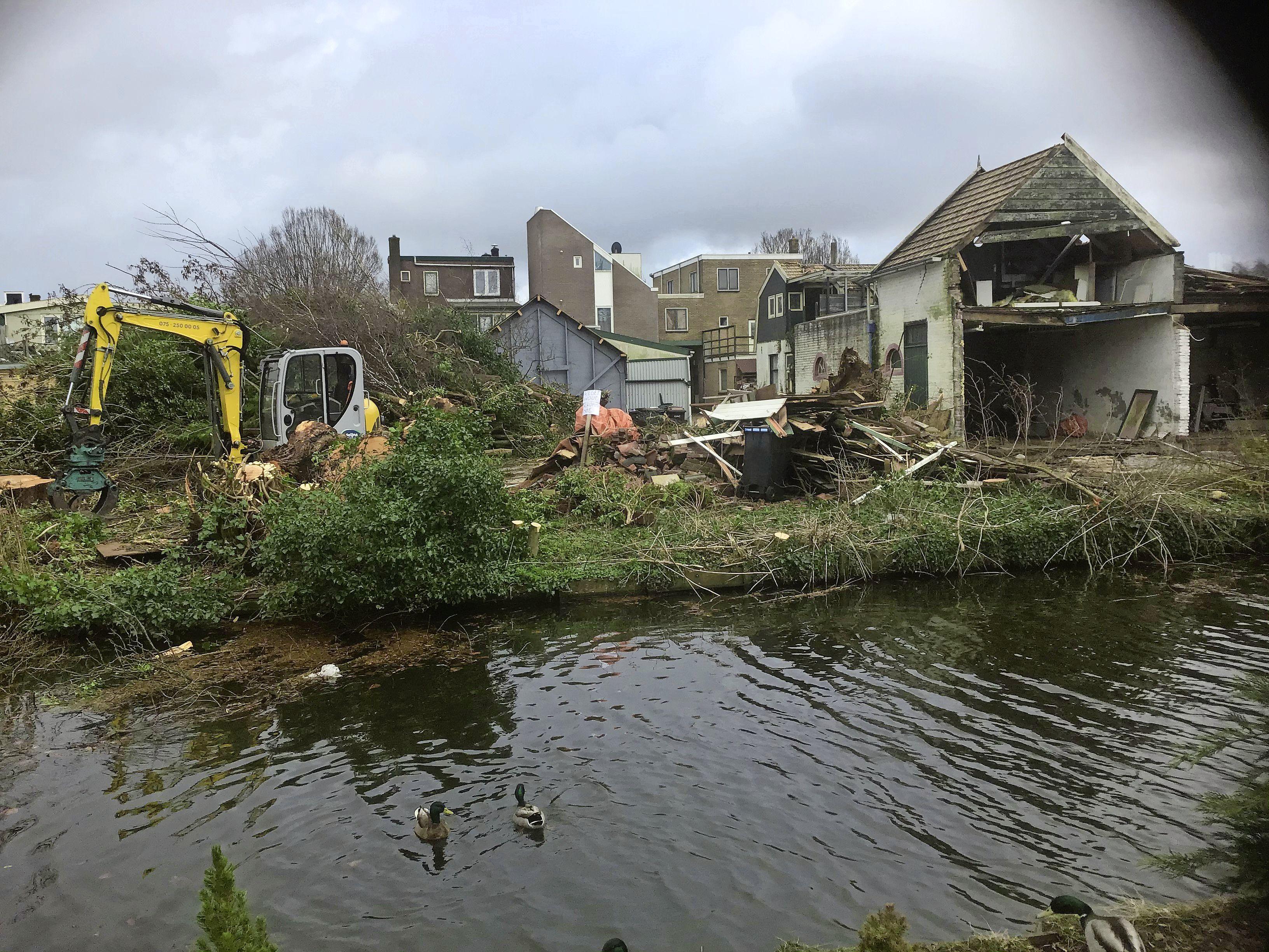 'Dag vogels, dag bomen': kleine natuurramp door bomenkap achter het Vlietsend [Opinie]