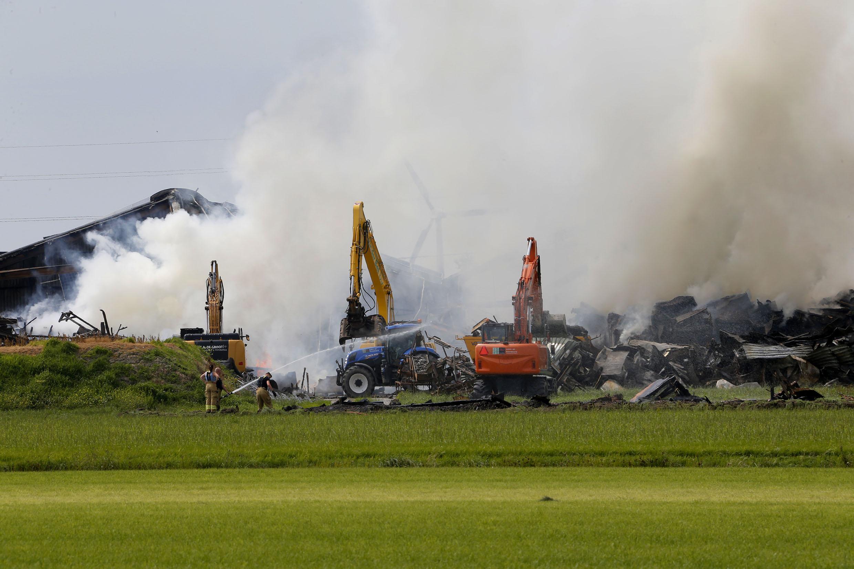 Nico Wit radeloos na brand in zijn bollenbedrijf in Moerbeek: 'Een levenswerk van ruim dertig jaar is naar de knoppen'