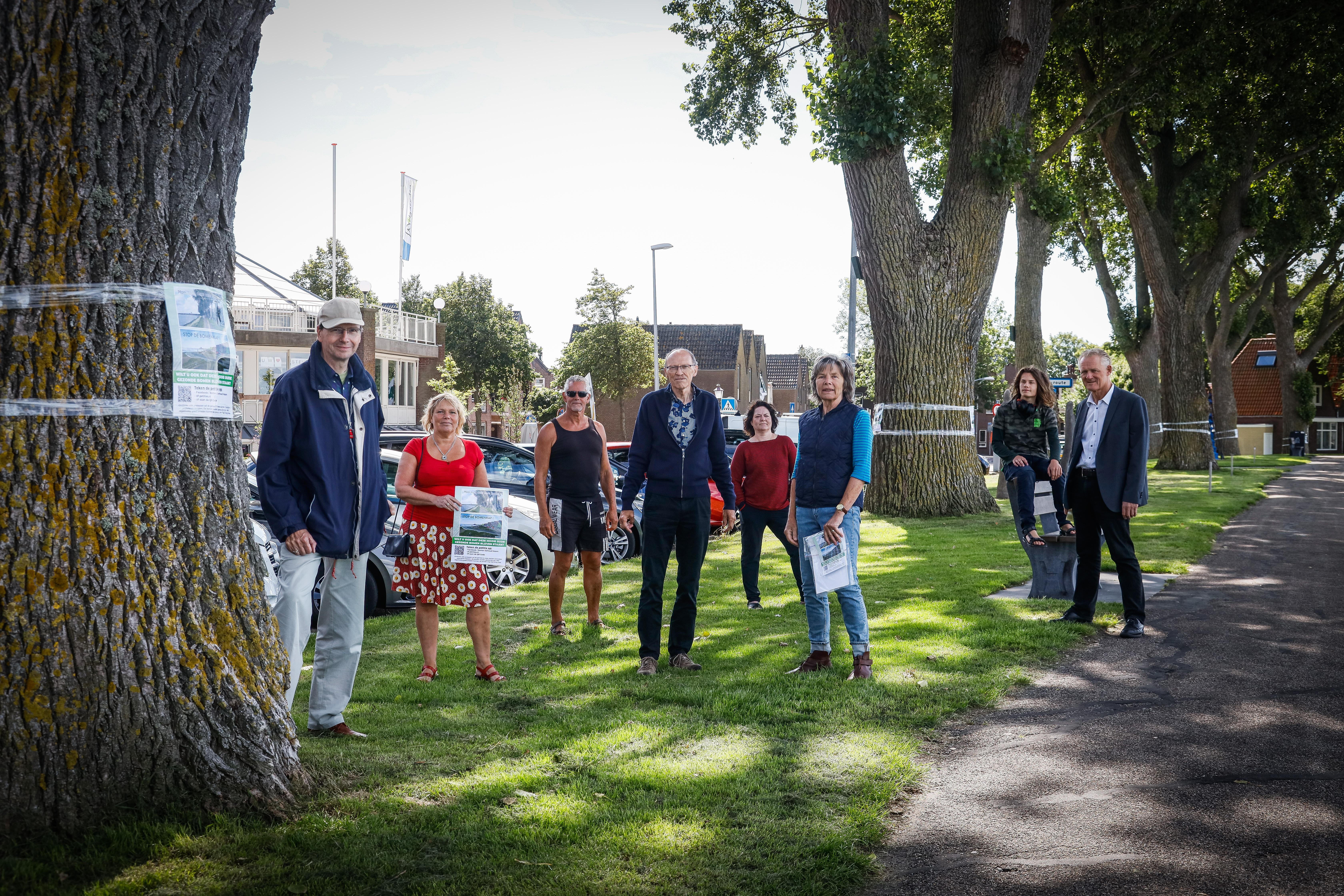 Nieuwe bomen op Westerdijk kunnen van vanaf oktober geplant worden