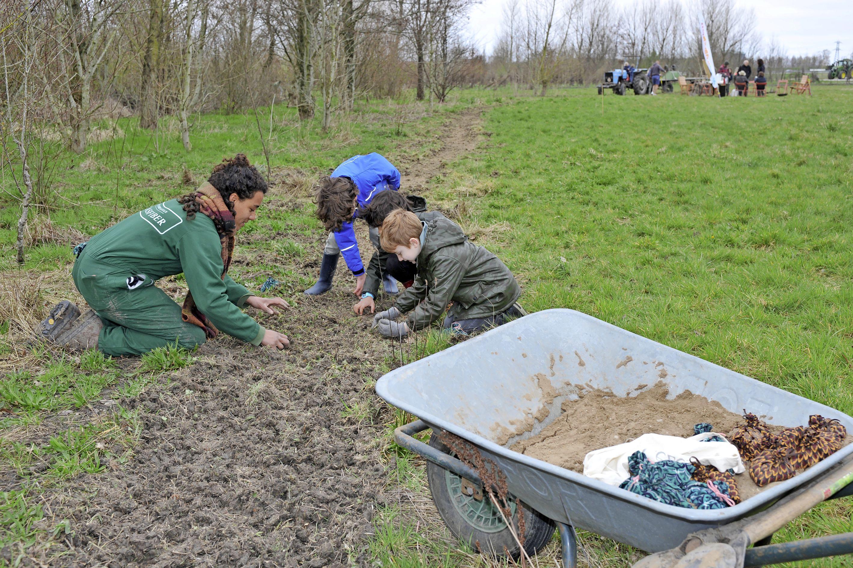 Bomen planten en bloemen zaaien op Landgoed Rorik in Beverwijk. 'Bloemzaadjes moeten geen wedstrijdje spelen met het gras'