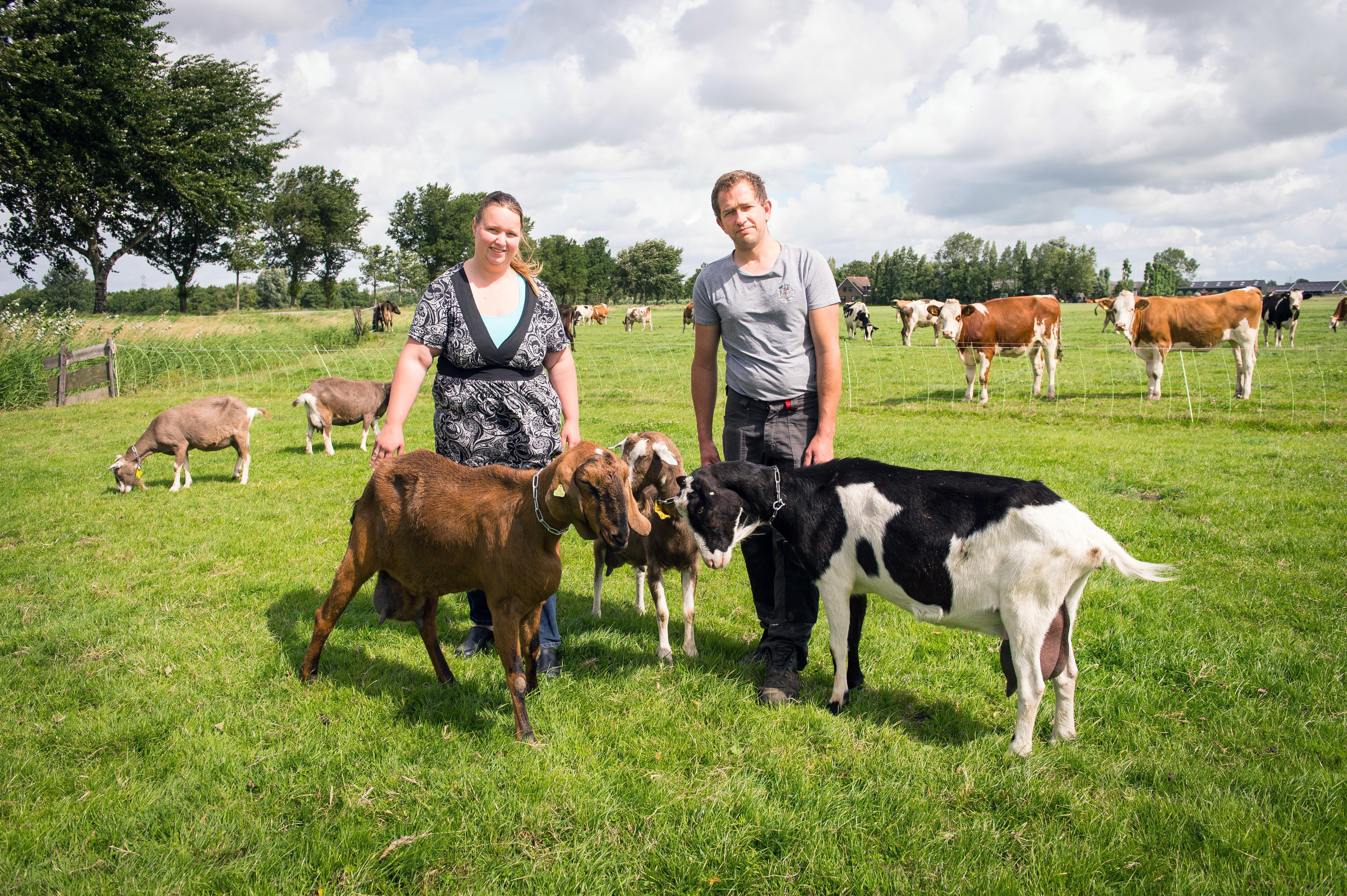 Koeien- en geitenmelk uit de tap in Assendelft