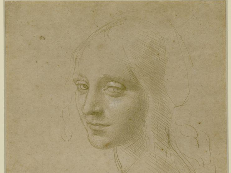Veel animo voor Da Vinci-tentoonstelling in Teylers Museum