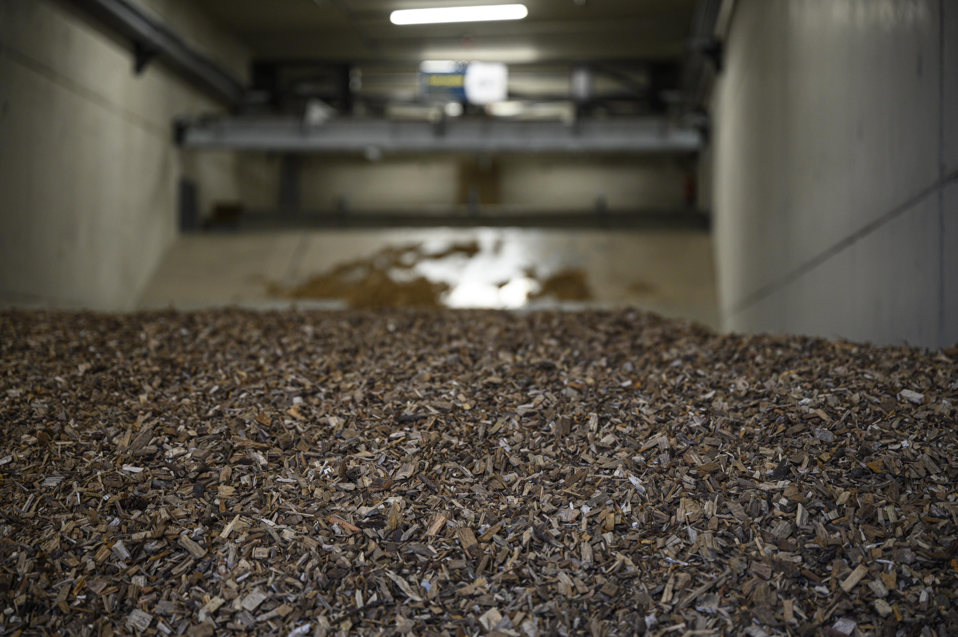 Meerlanden trekt stekker uit omstreden biomassacentrale in Rijsenhout