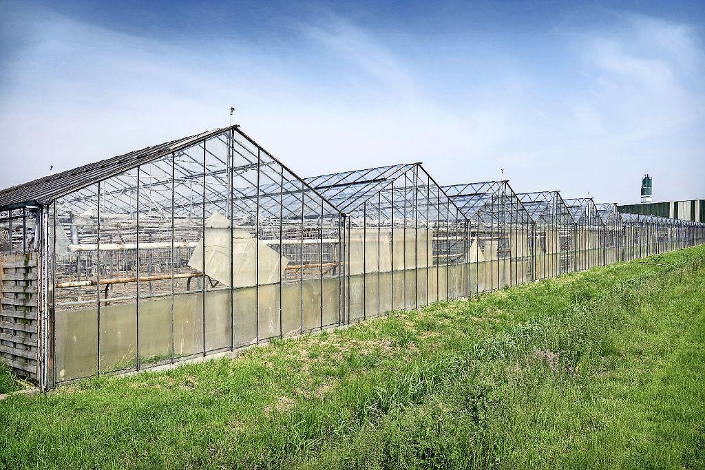 Besprekingen Rijsenhout vastgelopen, flink terrein blijft ongebruikt