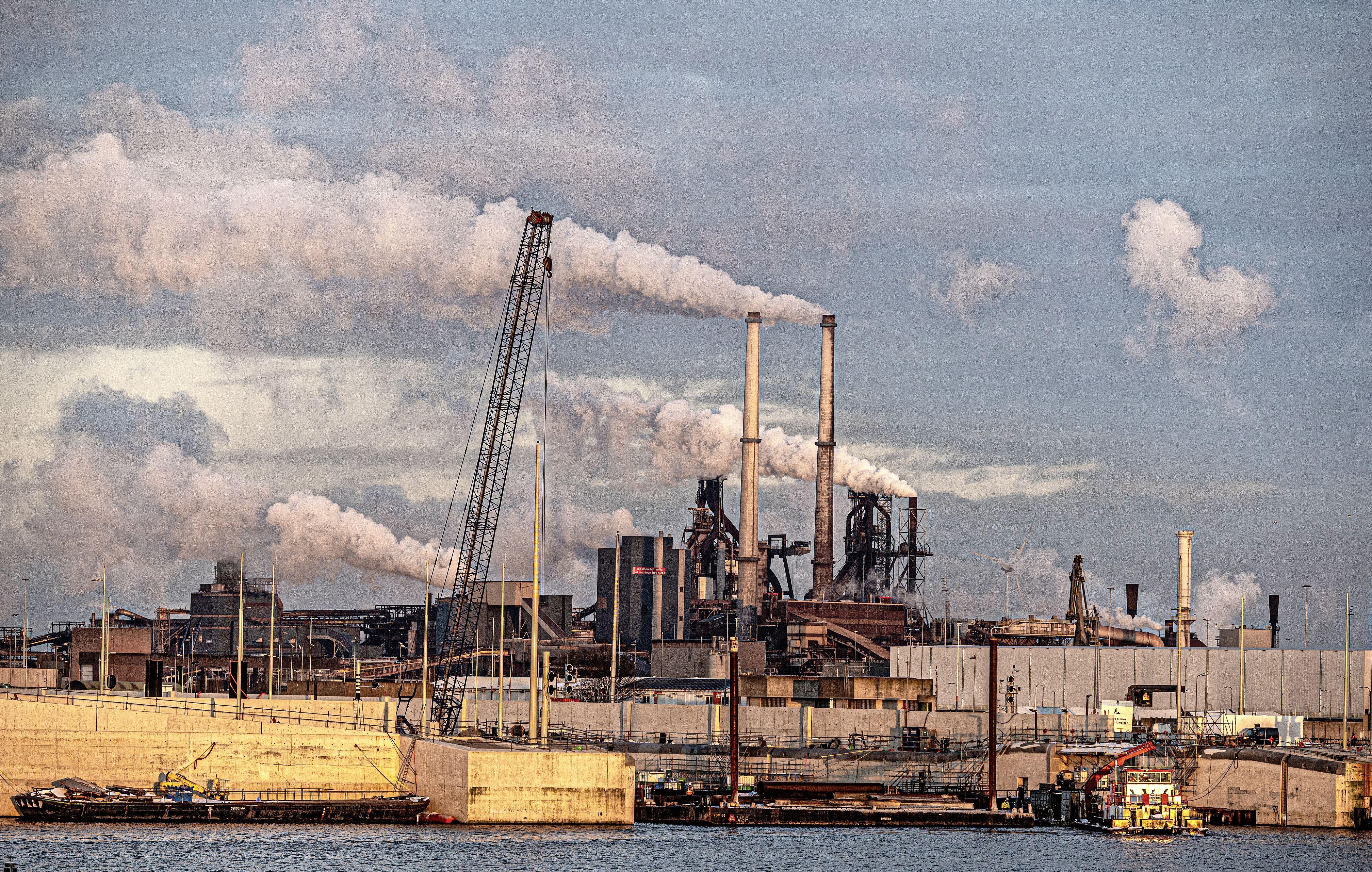 'Nederland moet bod doen op Tata Steel IJmuiden', zegt Heemskerks VVD-gemeenteraadslid Bertus Berghuis