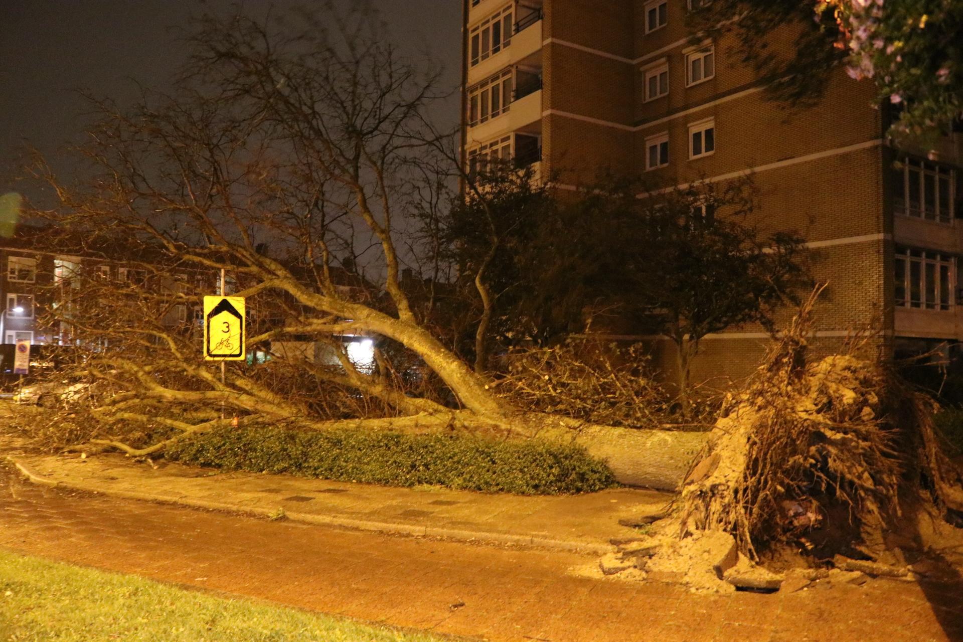 Storm Francis zorgt voor veel overlast en schade in omgeving Katwijk