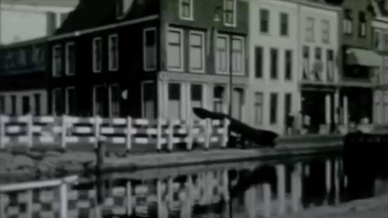 Bewegend Verleden: het dempen van de Leidse Langegracht in 1964 [video]