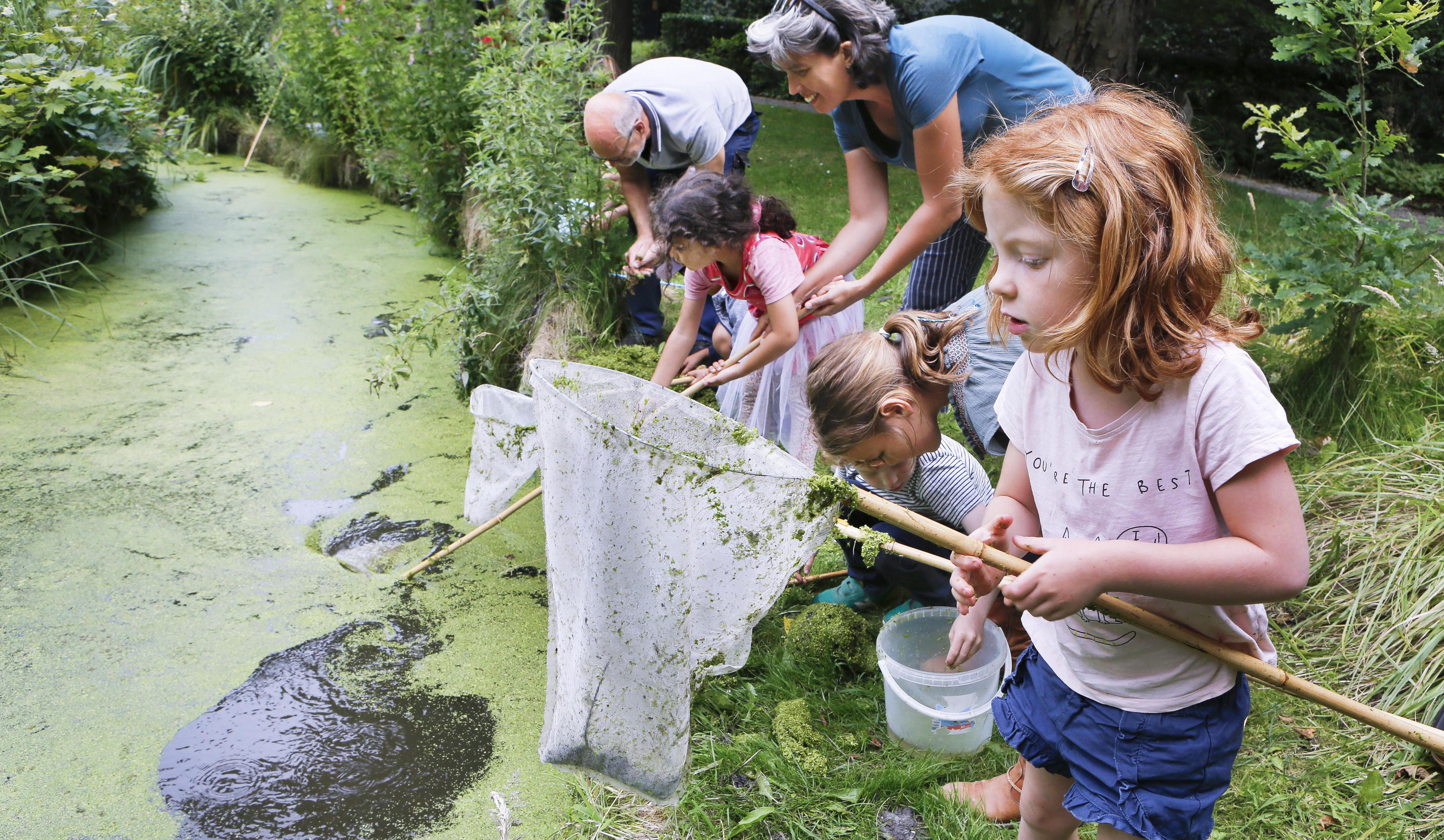 Op watersafari in de sloot van de Haarlemse Kweektuin