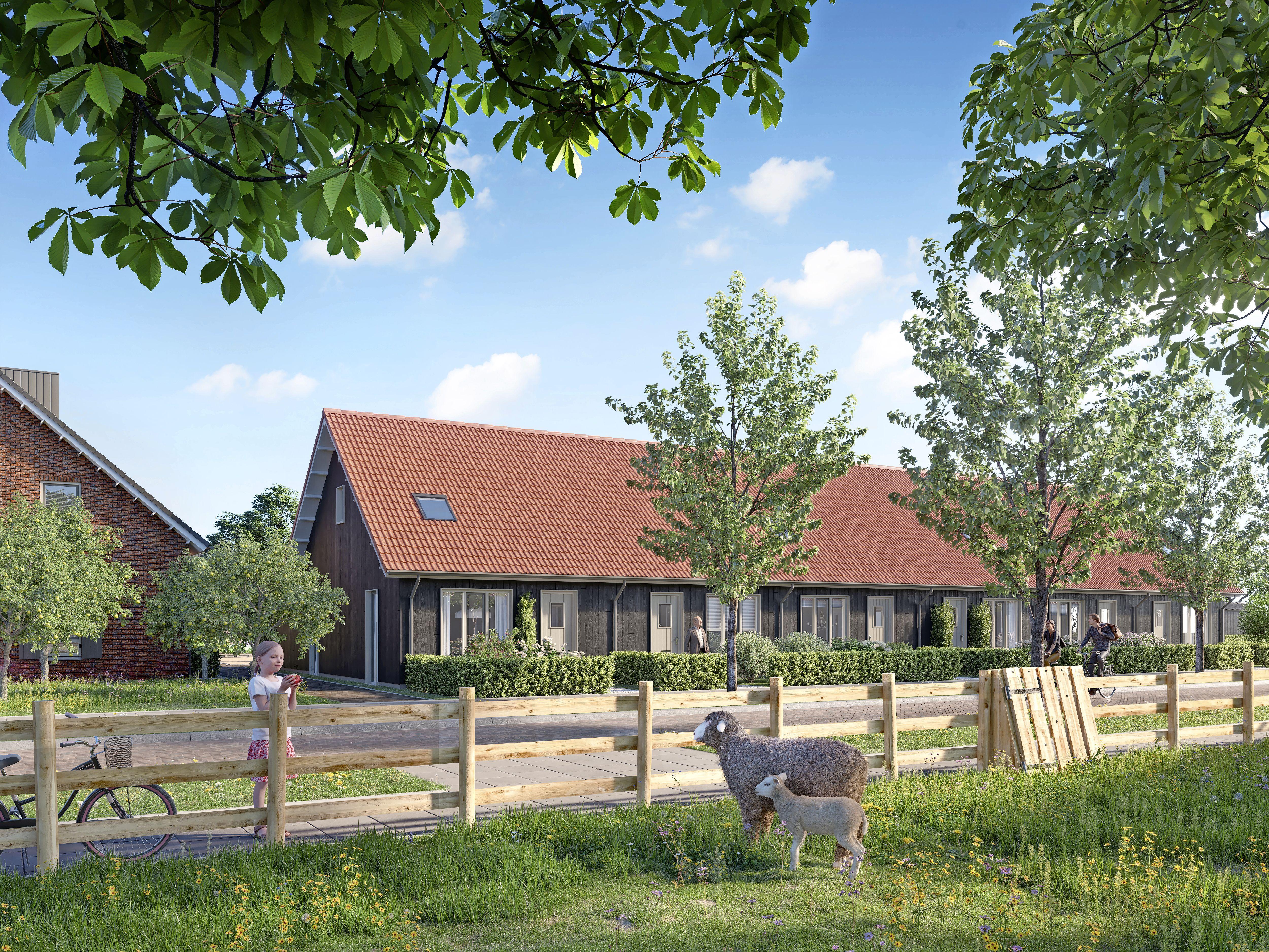 Veel interesse voor woningen in groene en sociale wijk Hugo's Tuin in Heerhugowaard. 'Het is niet te geloven. Er waren 518 inschrijvingen voor 39 woningen'