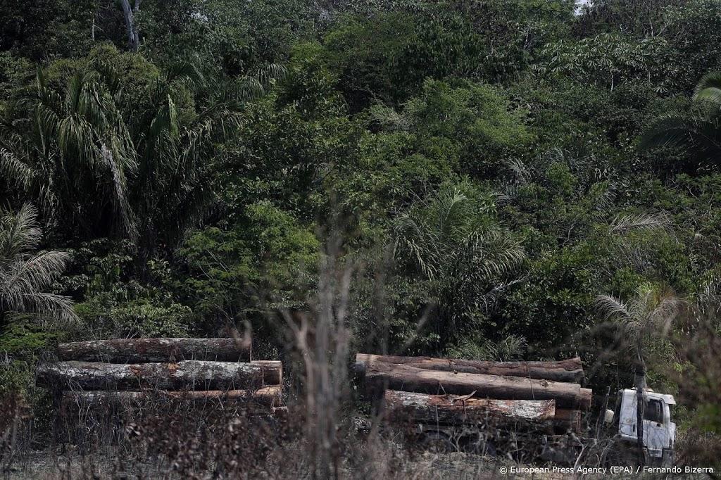 Recordhoeveelheid illegaal gekapt hout onderschept in Brazilië