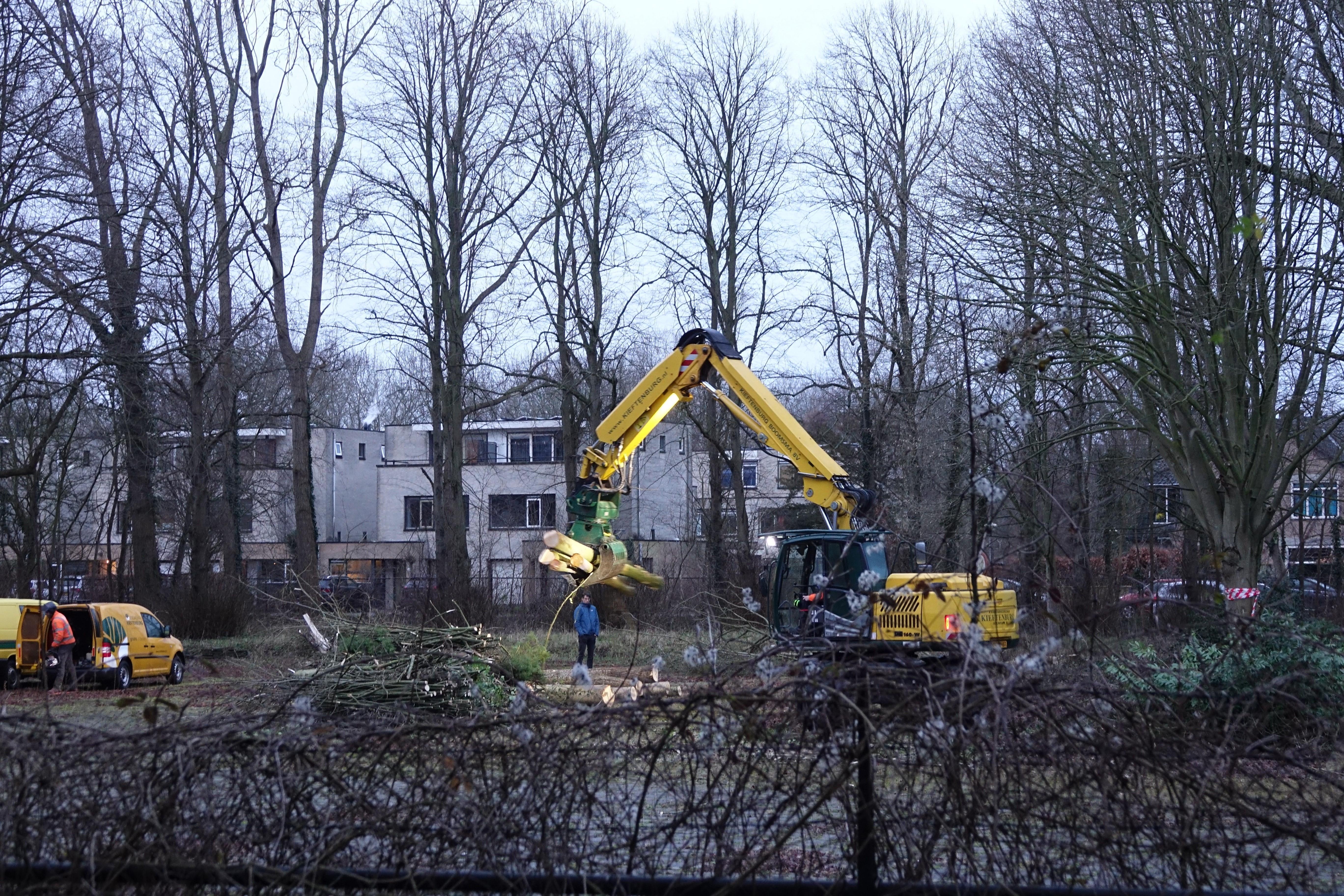 23 bomen gekapt bij Missiehuis in Driehuis om ruimte te maken voor bouw nieuwe woningen
