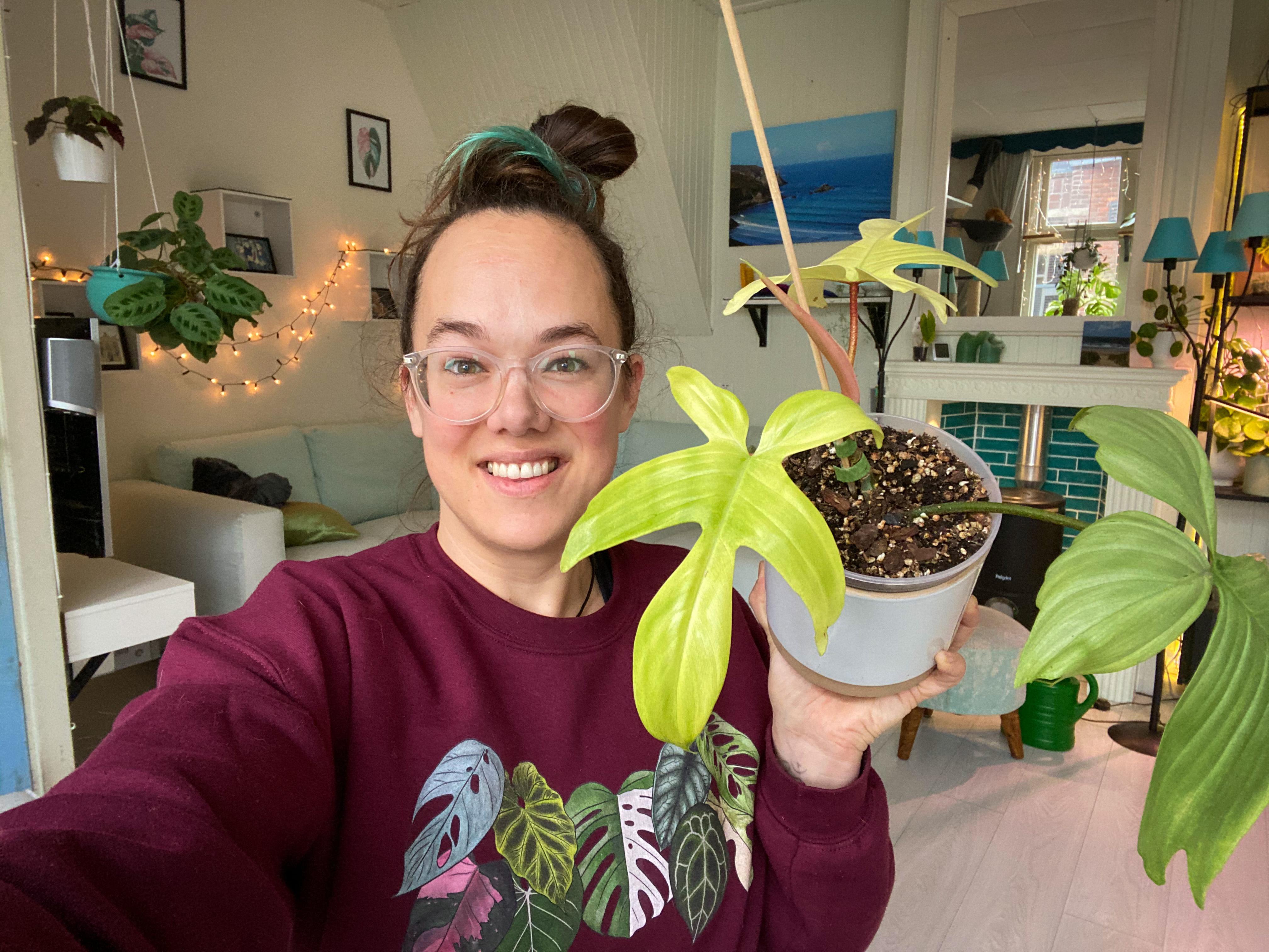 Plantfluencer: 'Een nieuw blad brengt vrolijkheid in een lastige periode. Plant-therapie noemen we dat'