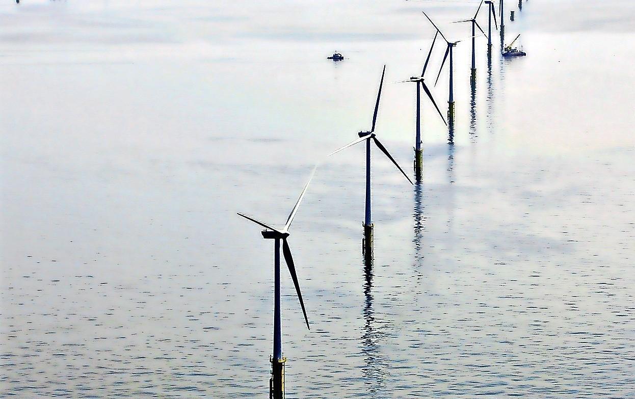 'Komst nieuw windpark bij Bergen is goed voor bedrijfsleven IJmond'
