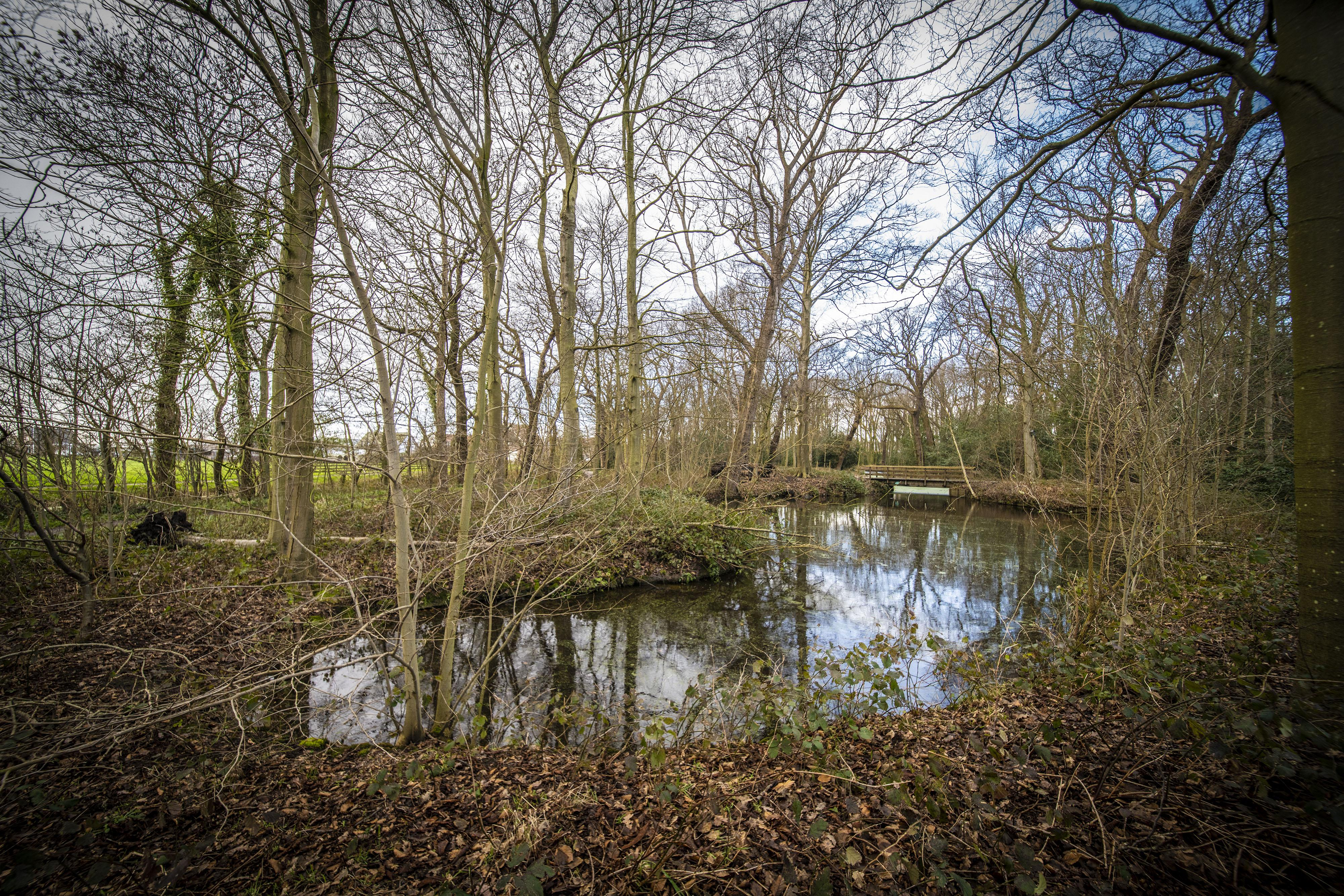 Stromend water Overbosch stap dichterbij