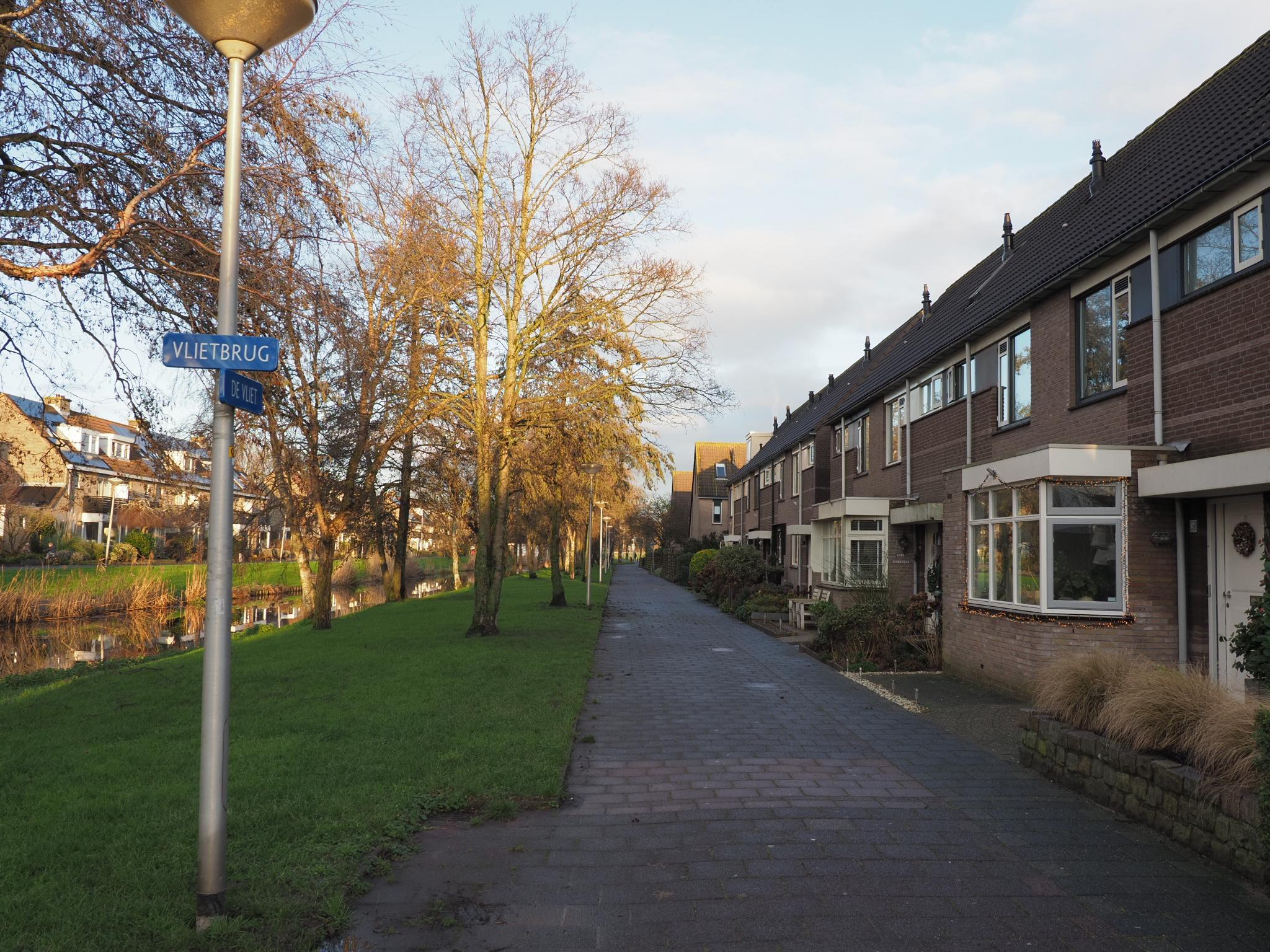 Dood van echtpaar in Velserbroeks rijtjeshuis zorgt voor schrik: bewoners van De Vliet moeten tragedie nog verwerken