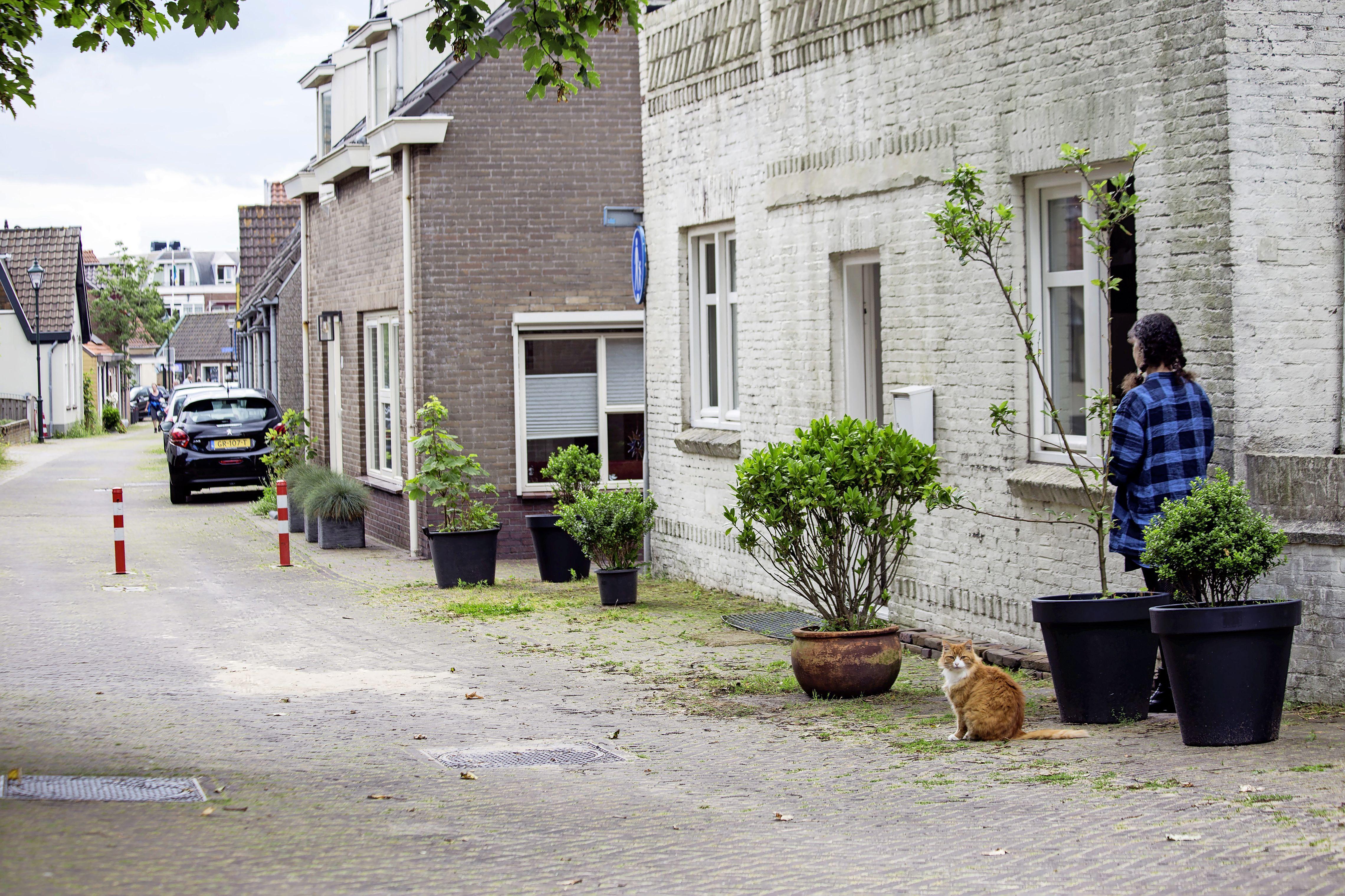 Rijtje plantenbakken voor de deur om hardnekkig foutparkeren tegen te gaan: het mag niet. Gemeente dreigt met boete van 5.000 euro. 'Dat is 500 euro per plant!'