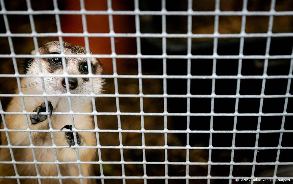 'Stop handel in wilde dieren om volksgezondheid te beschermen'