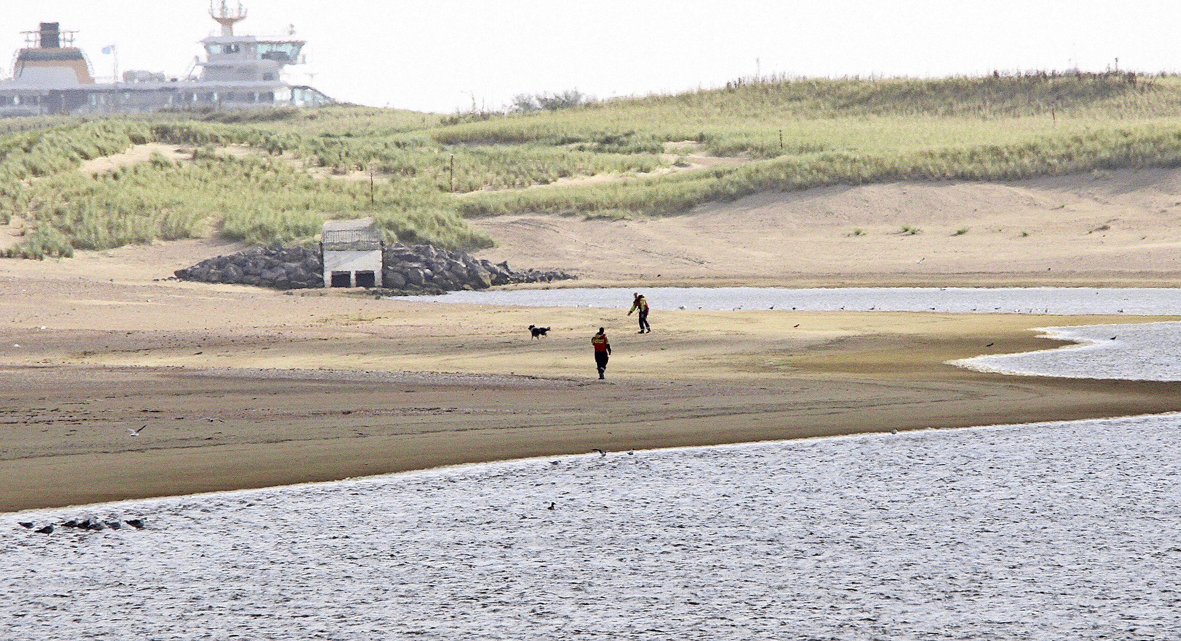 KNRM redt ontsnapte hond van een zandplaat, het angstige dier laat zich pas na een uur vangen