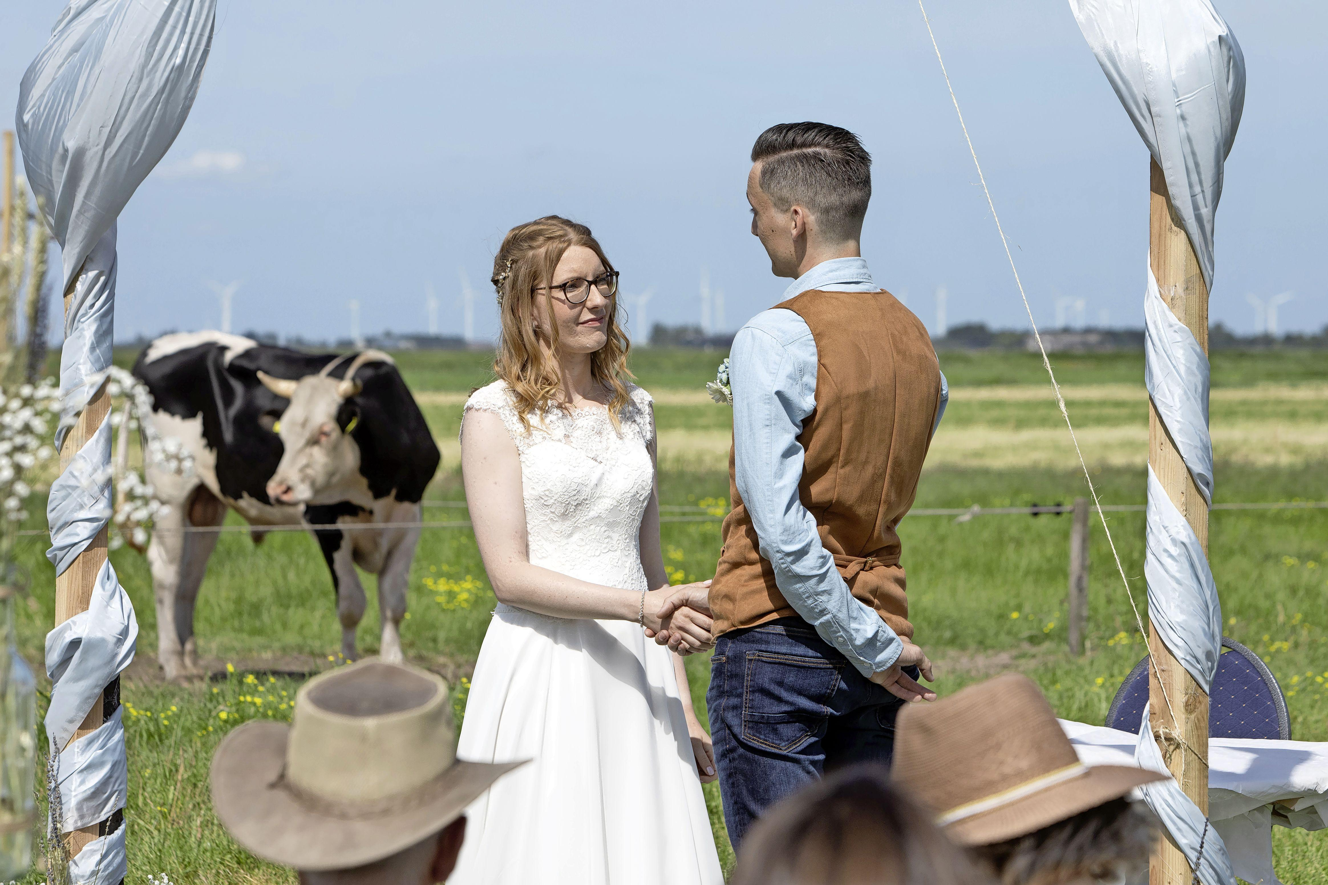 Trouwen in de Eempolder, Lisa en Tim deden dit: 'Een droom die uitkomt, voor één dag was het weiland een officiële huwelijkslocatie'