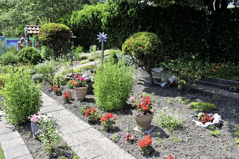 Contract voor tuintje in Velsen-Noord is niks waard, alles moet weg. Hannie en Jan: 'We blijven vechten voor onze tuin'