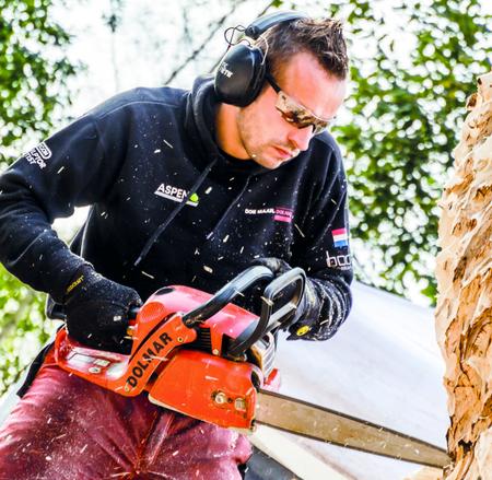 Nieuwe houtkunst voor Ghoybos bij Oud Ade