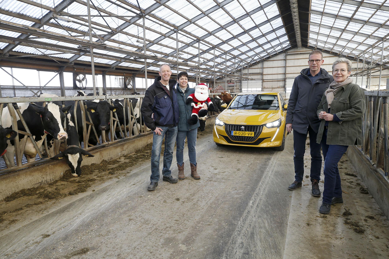 Met je auto door de stal, het mag tijdens de drive-through vlak voor kerst. Boeren, tuinders en vissers pakken uit tijdens verlichte boerderijenroute Hollands Kroon