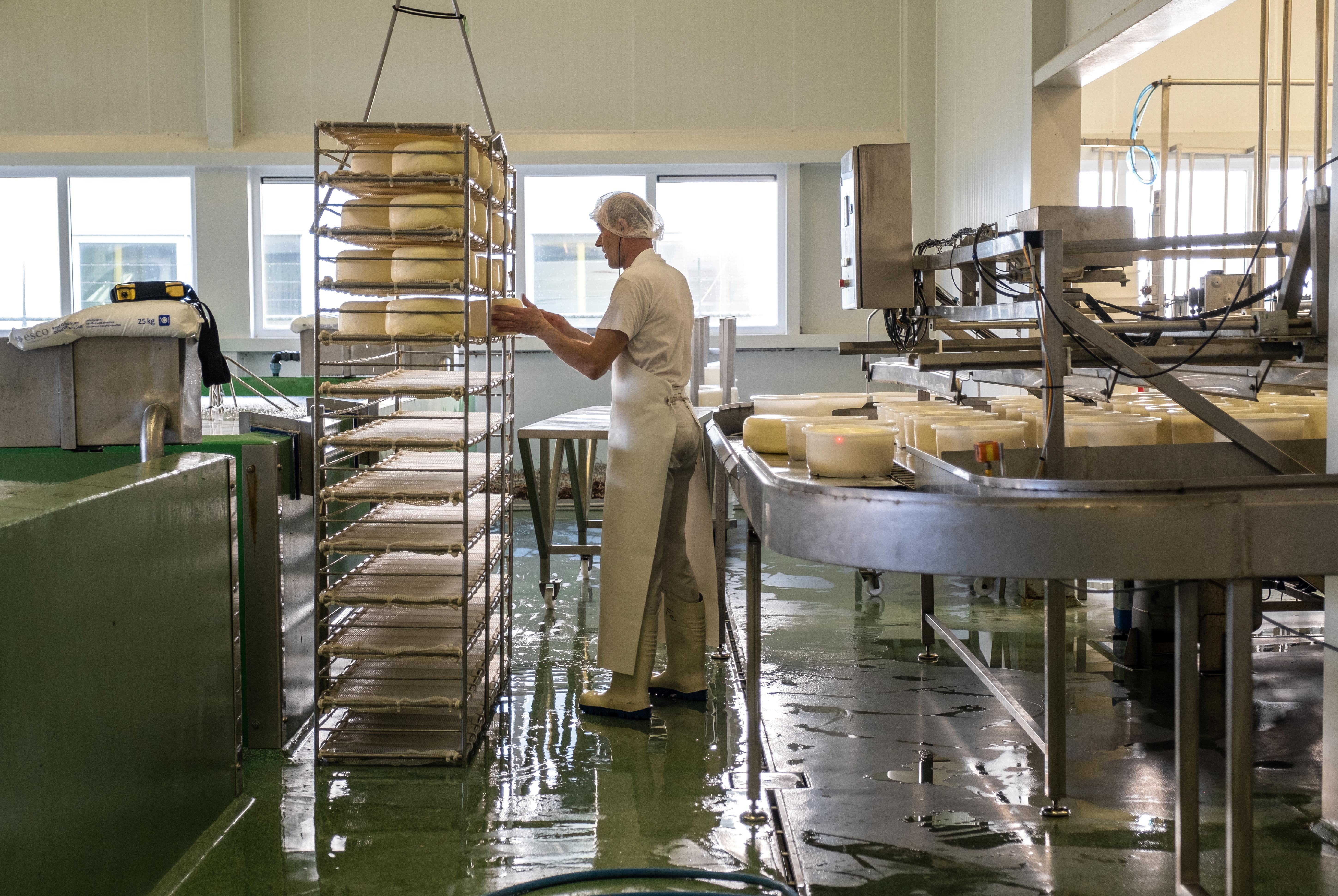 Twee kaasfabrieken slaan de handen ineen. Klaver Kaas en Cono Beemster komen samen met 'Kaas van Noord-Holland'