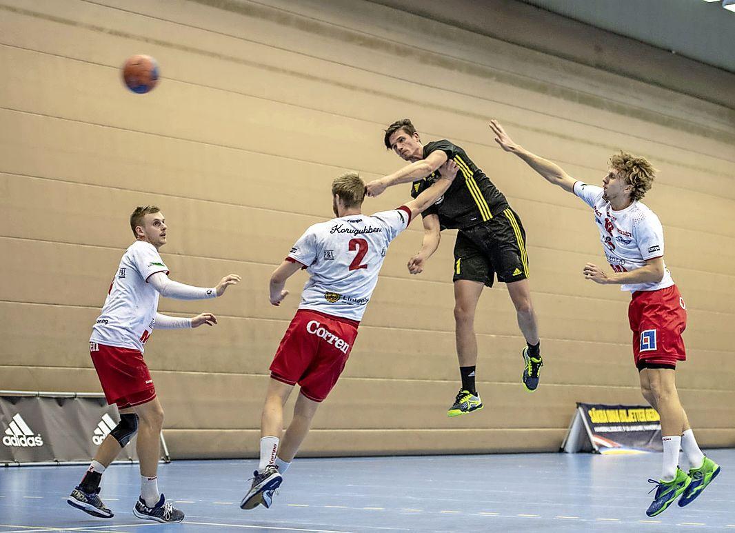Volendam legt geroutineerde Zweedse handballer vast. Zlatko Pavicevic kiest voor 'avontuur' aan de Dijk