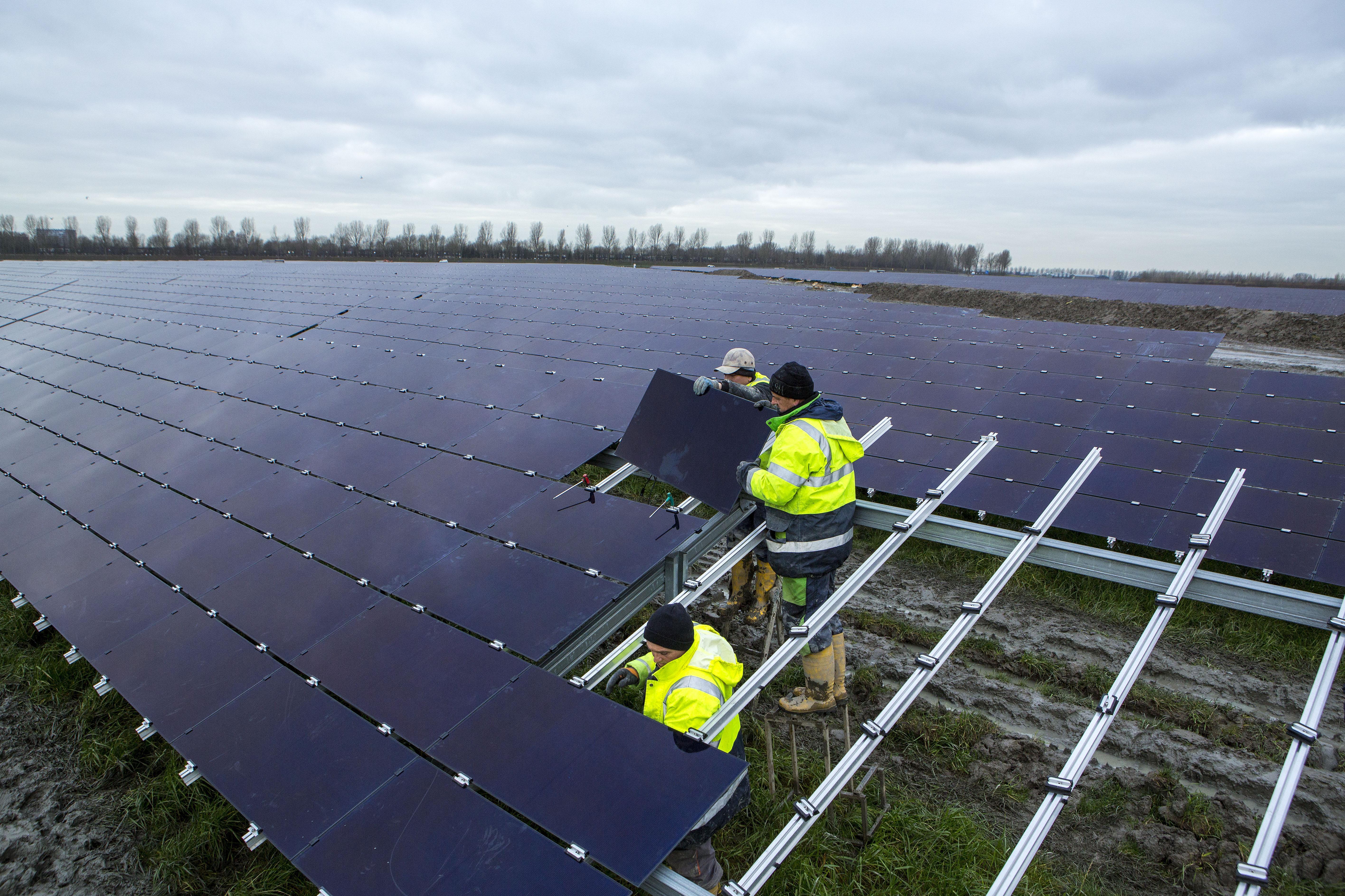 Zonneweide in Hoogwoud? Bedrijven azen op landbouwgrond voor duurzame projecten