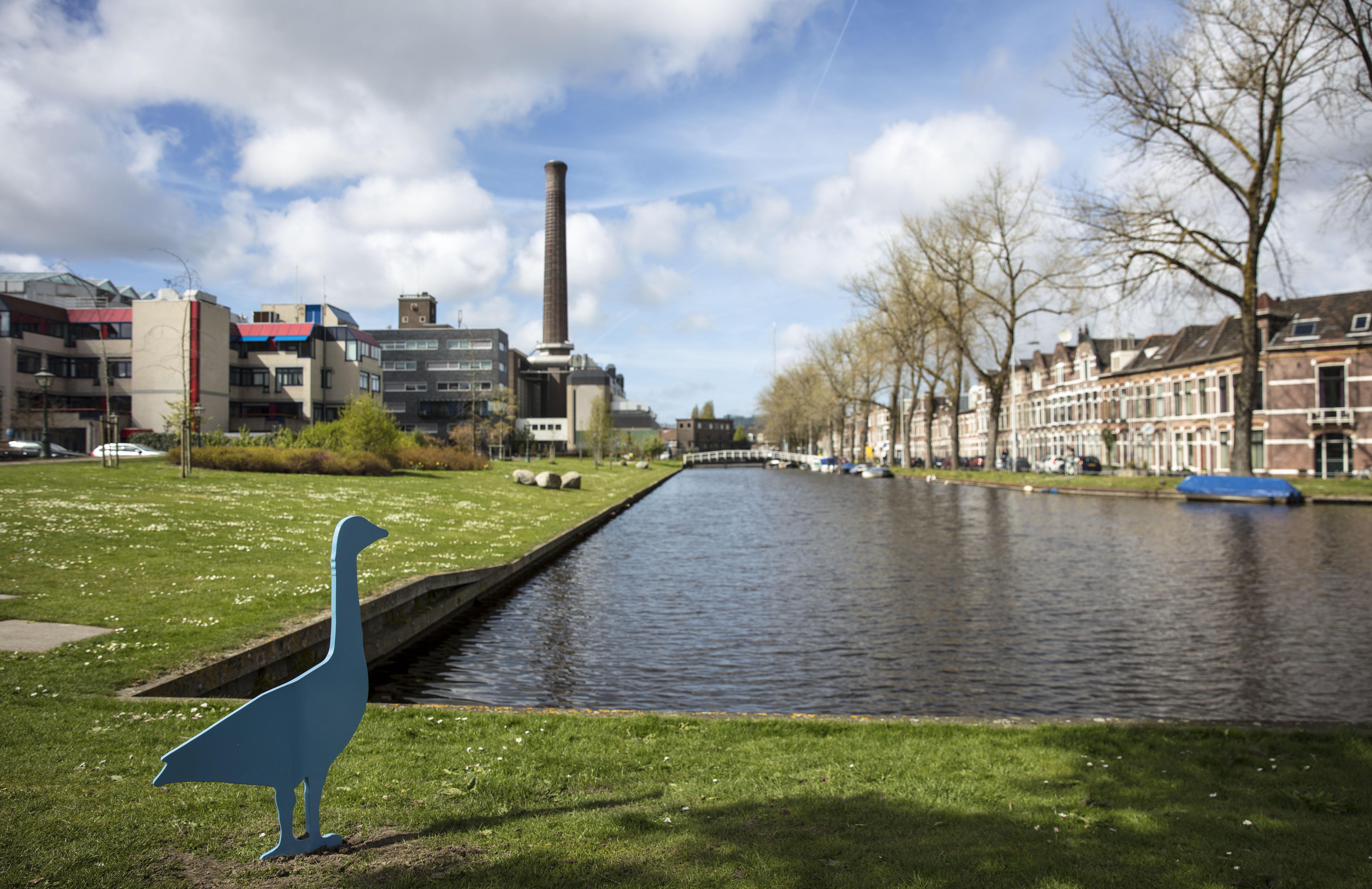 'Energiepark verworden tot haastklus': Leidse wijkvereniging Noordvest-Molenbuurt roept wethouders op beter te letten op belangen wijkbewoners