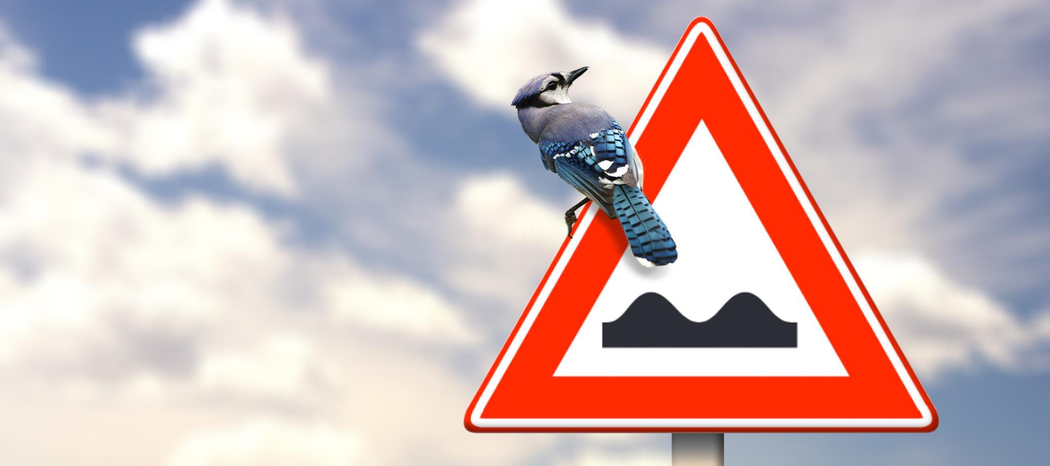 Is het verkeersbord 'slecht wegdek' vrijbrief om niets te repareren?