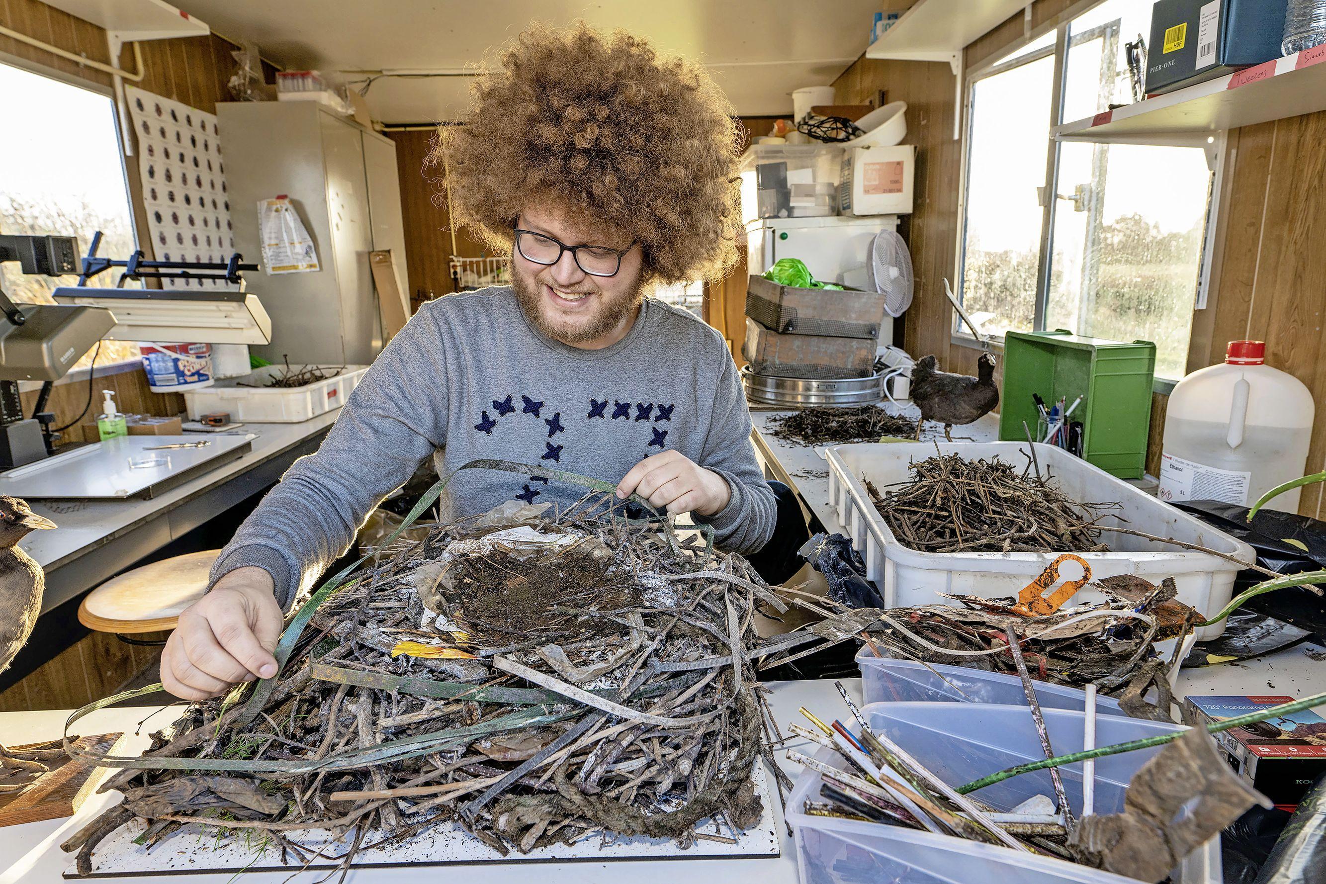 Plastic afval is aantrekkelijk - Watervogels trekken naar de stad, maar vinden weinig nestmateriaal