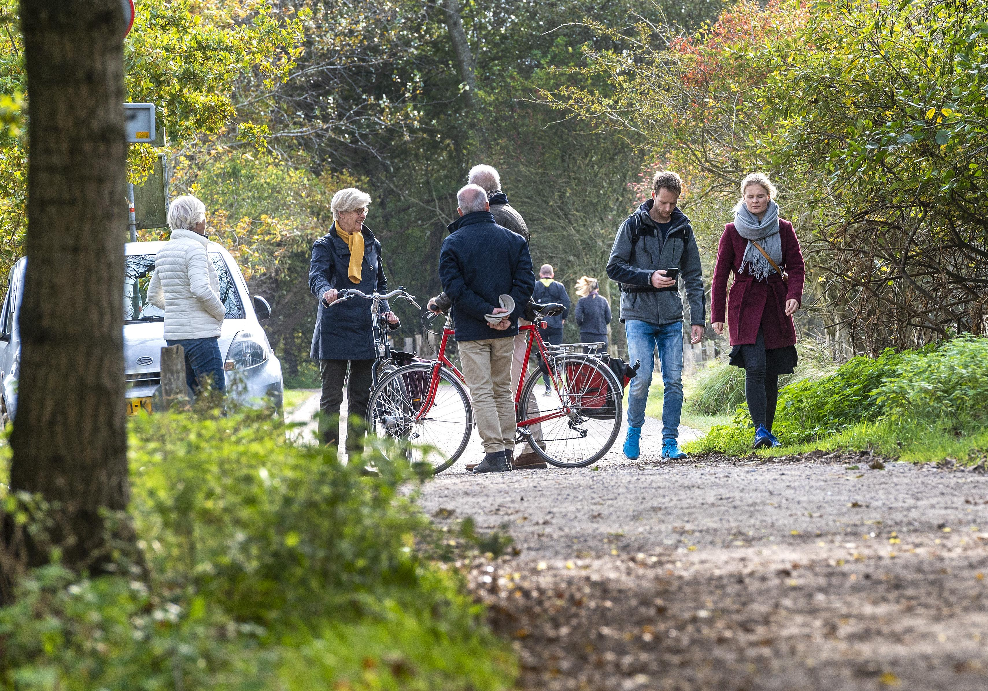 Drukte in de bossen bij Santpoort-Noord en Heemskerk bij gebrek aan ander vermaak. 'Ik kan genieten van een mooi omgevallen boom'