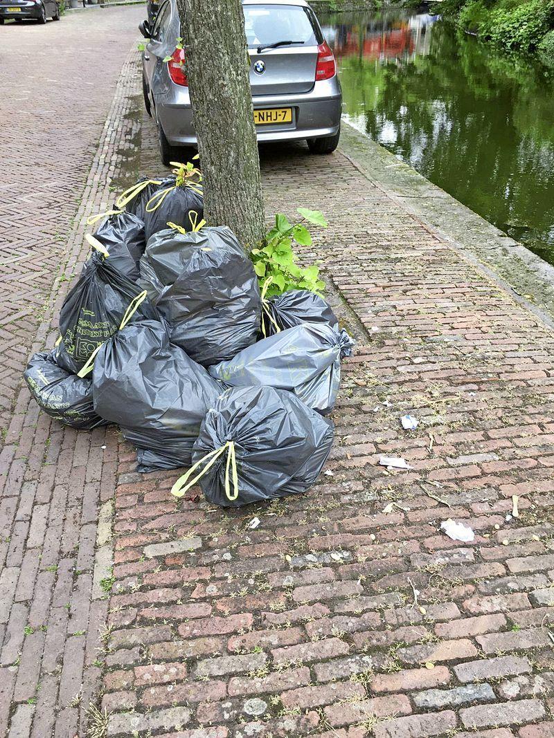 Havenkwartier Hoorn is (te) laat aan de beurt bij afvaldienst, katten en meeuwen hebben vrij spel