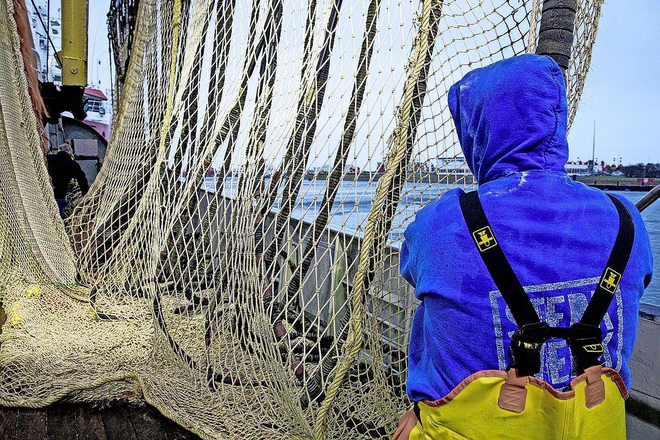 Pulsvissers 'uit het veld geslagen' door besluit EU-hof: verbod blijft van kracht