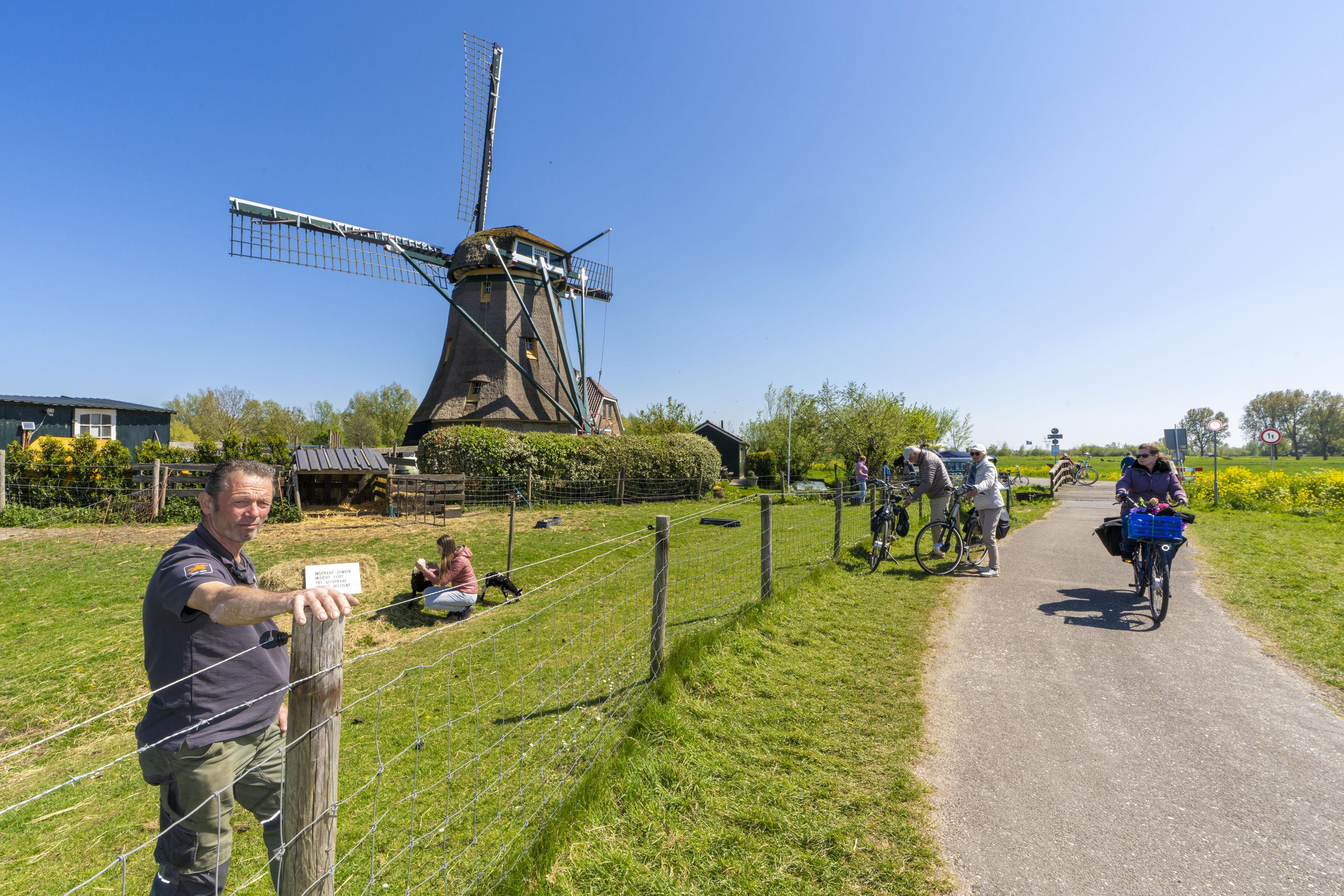 Molenaar Ben Hoogduin is doodziek van verdwijnen van zijn weitje voor een fietspad: 'Laatste stukje polder wordt opgeofferd'