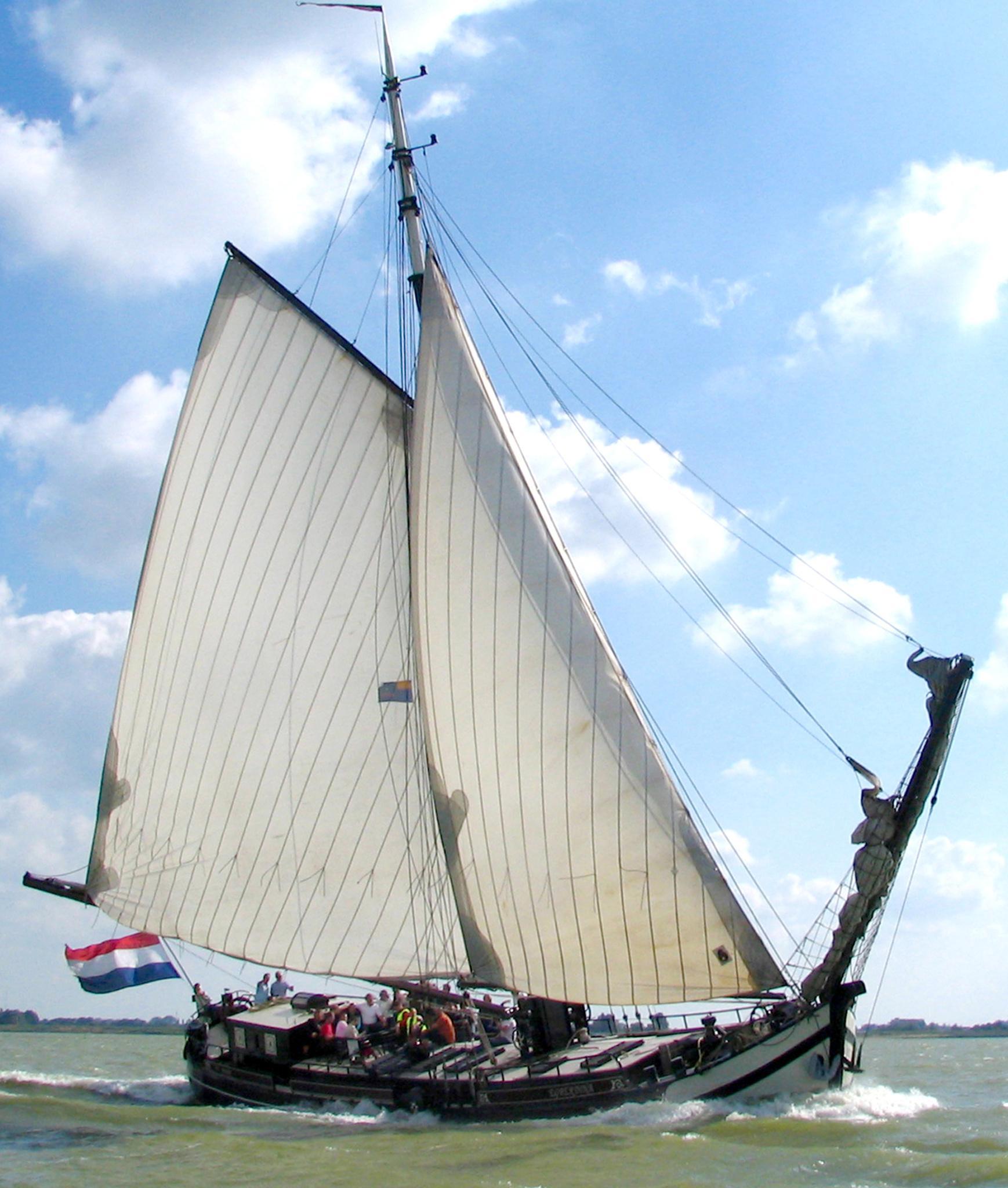 Met schip op excursie naar fonteinkruid