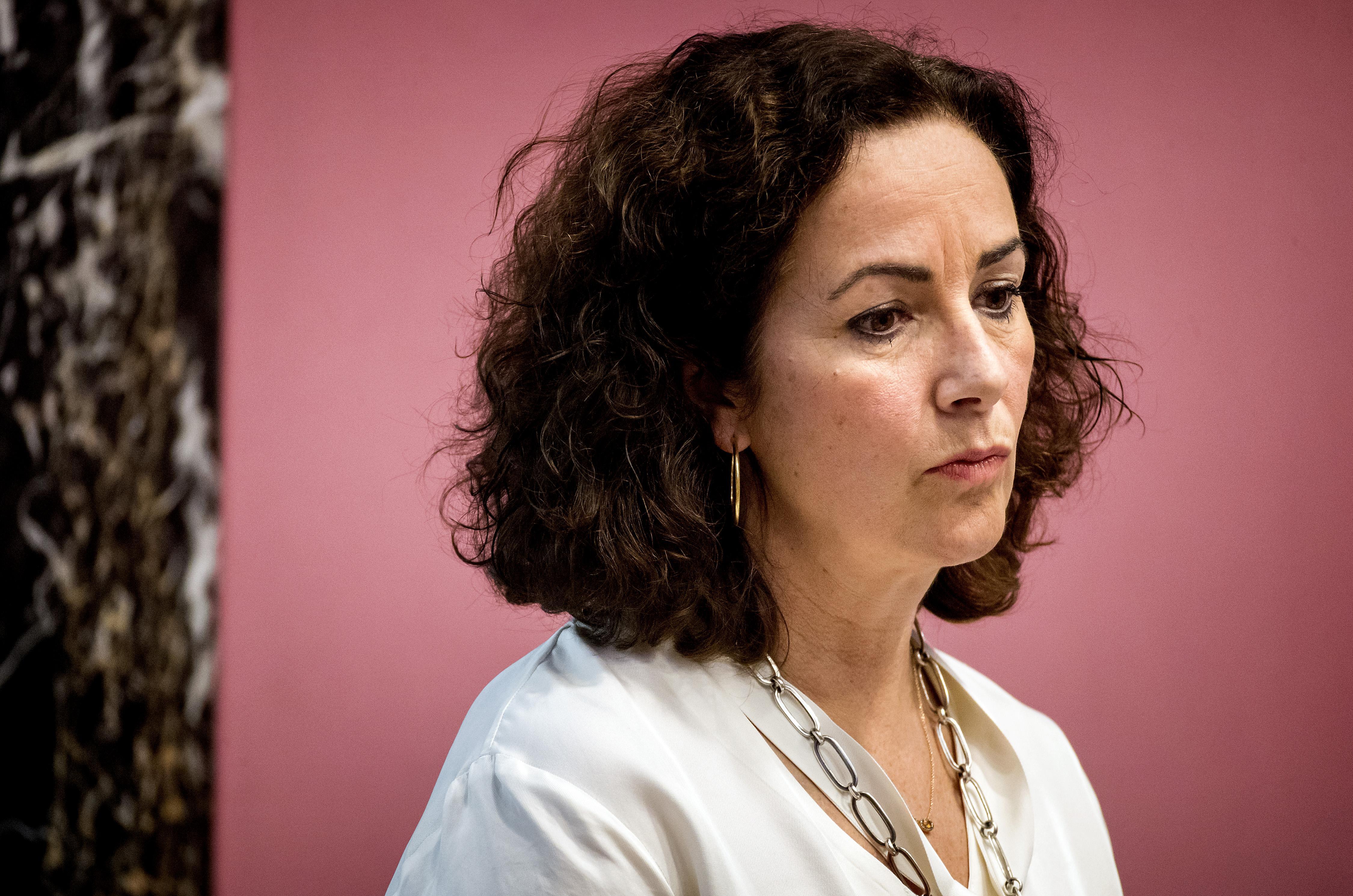 'Zoon Halsema niet aangehouden voor inbraak, maar voor wapenbezit'