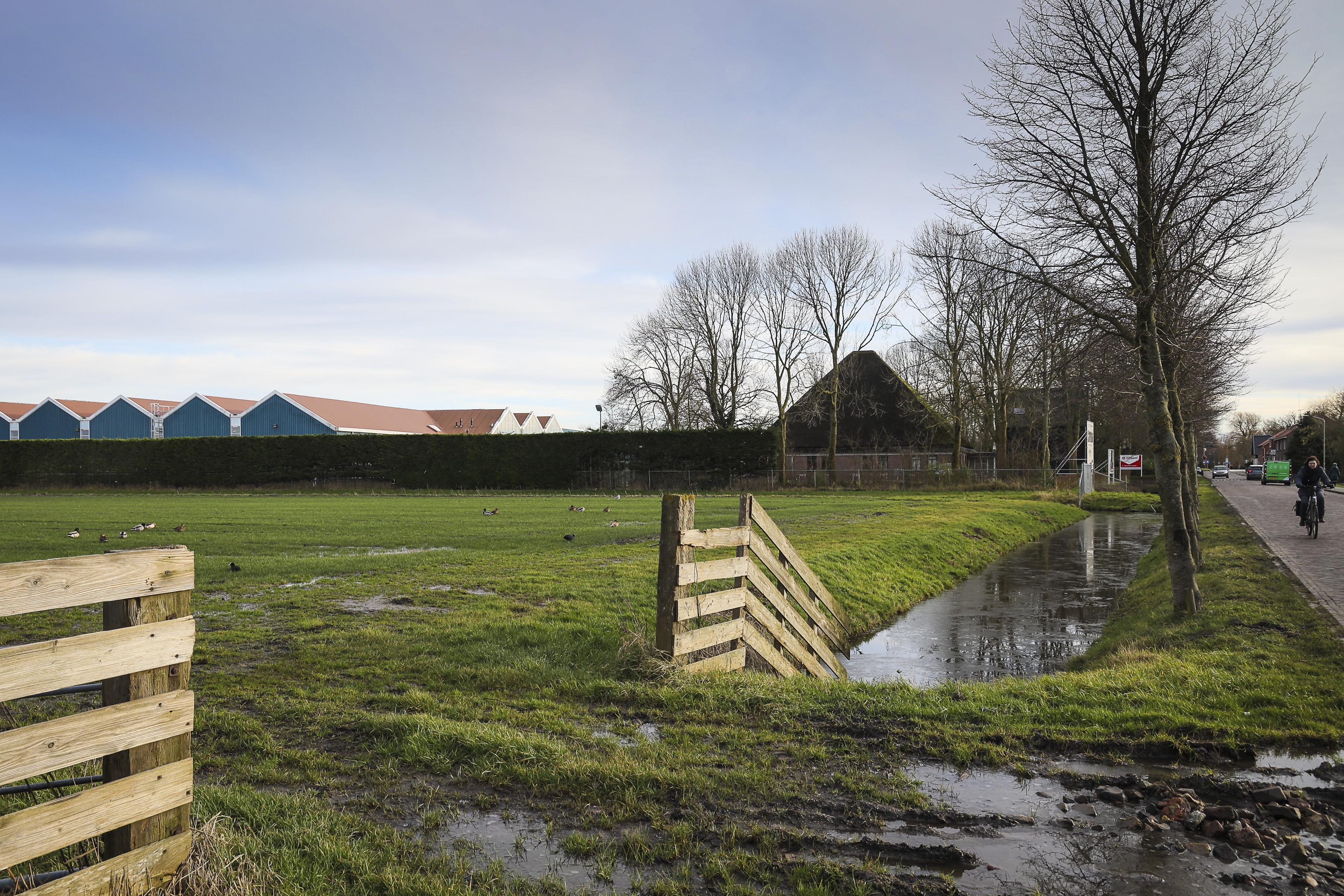 Voor 30.000 euro per jaar gaat de zon op. Zonneweide levert fors geld op, maar boeren zien addertjes onder het gras