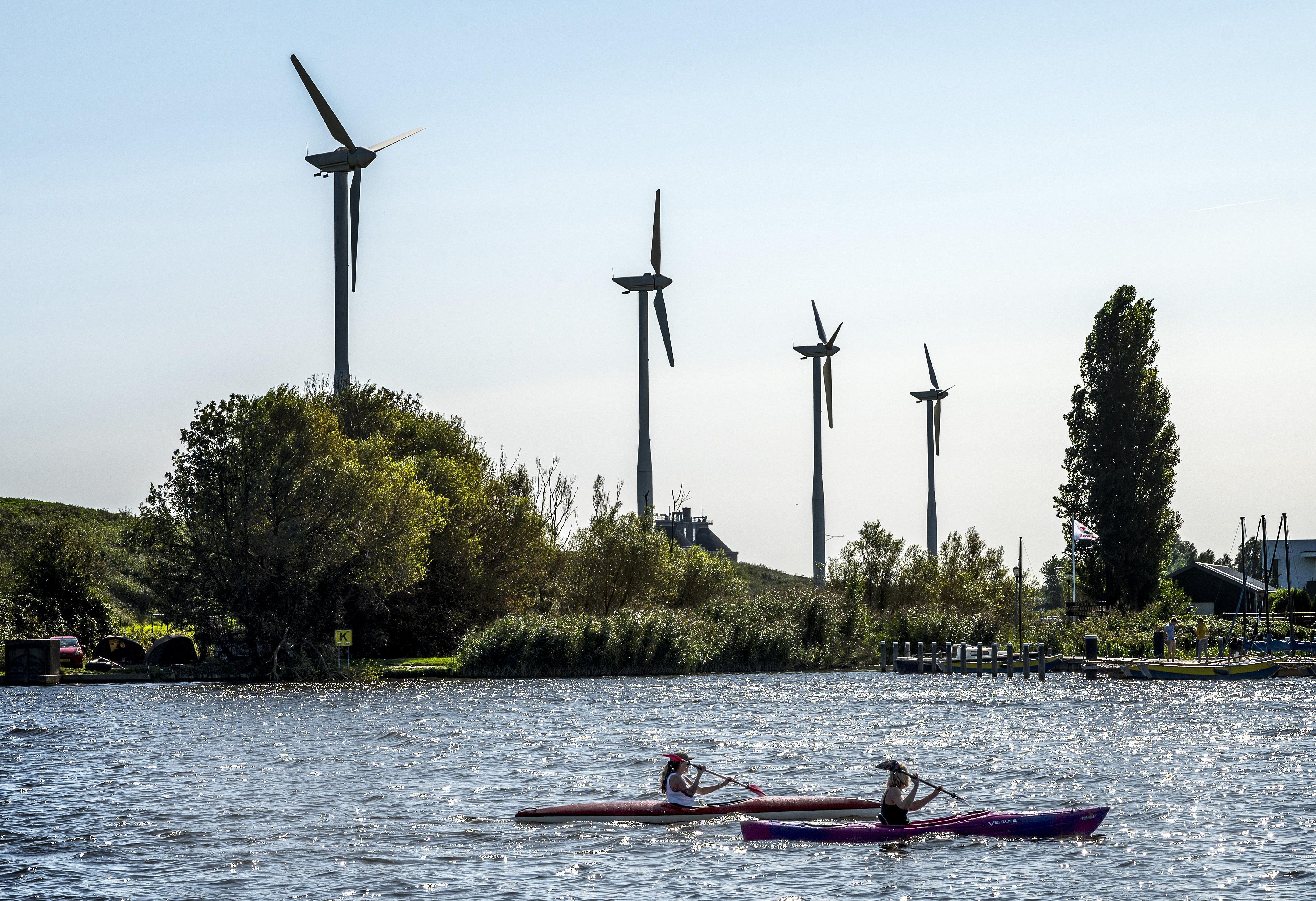 Warmtenet, zonnepanelen en windmolens. De Haarlemse Waarderpolder zet in op duurzaamheid: 'Bij ons is dat geen 'moetje' meer'