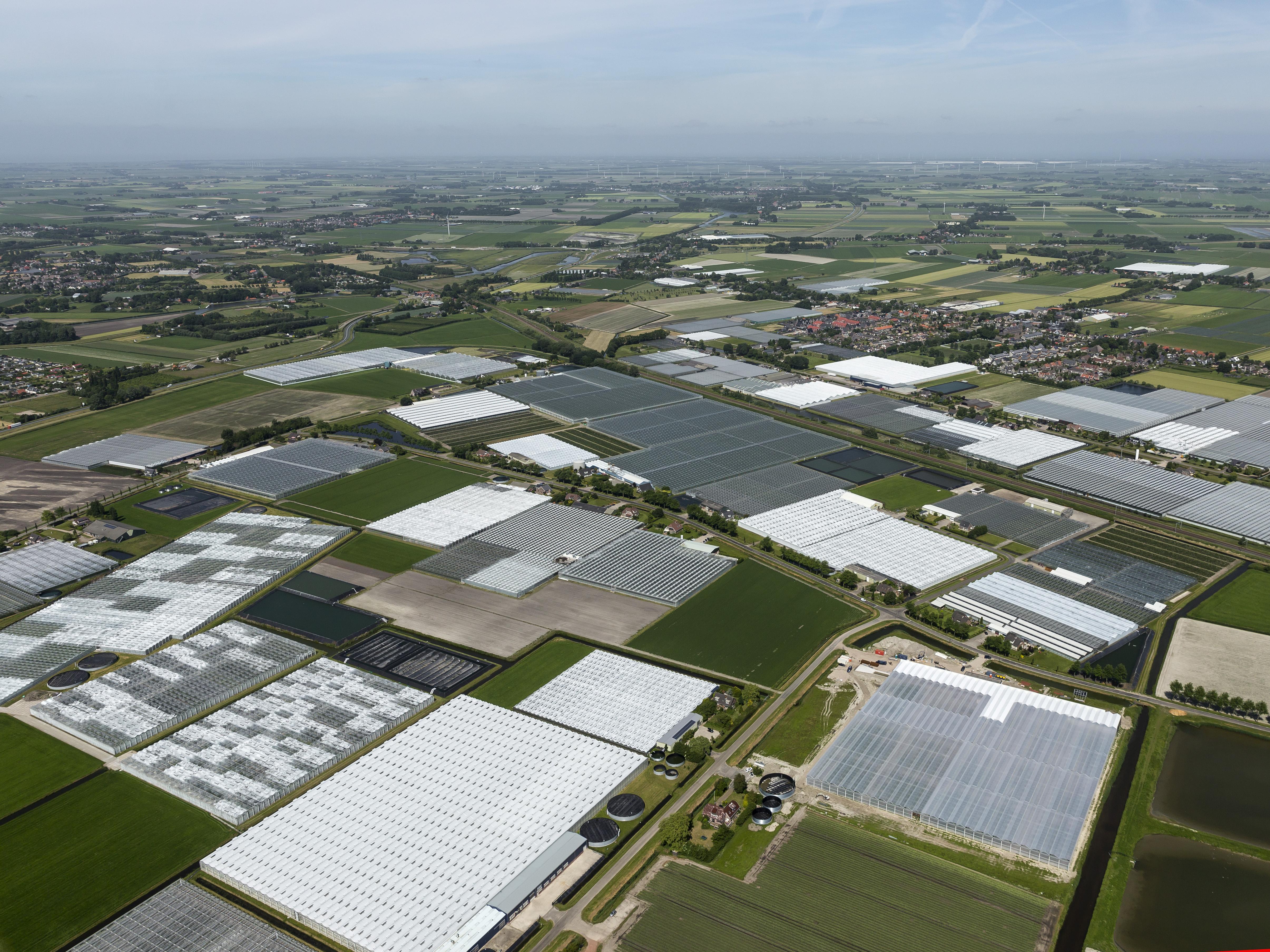Komst windturbines noodzakelijk voor ambitieuze duurzaamheidsambties glastuinbouwgebied Alton
