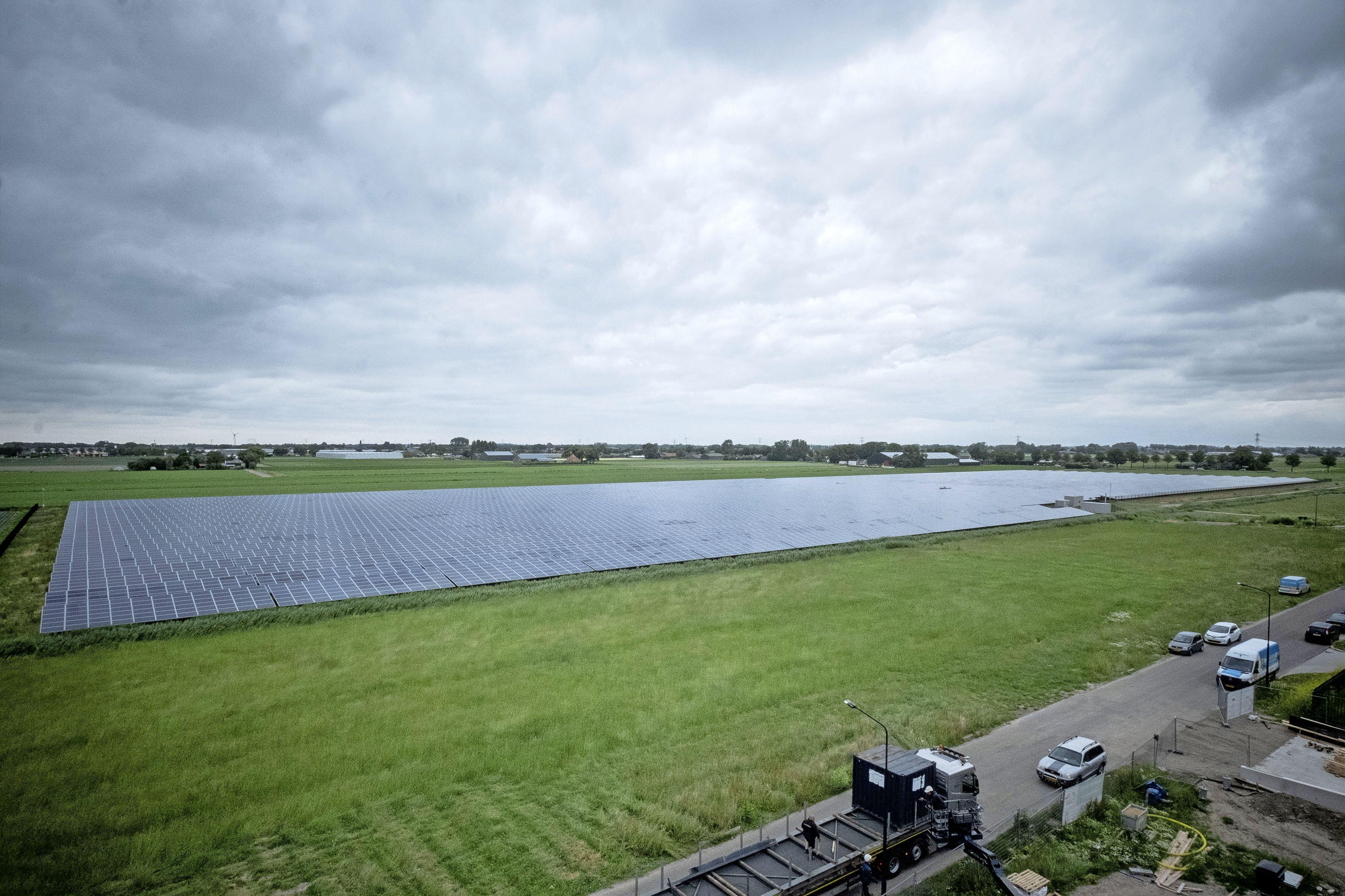Hillegoms weidegebied blijft verschoond van zonnevelden en windmolens. Op bollenland mag het onder voorwaarden wel