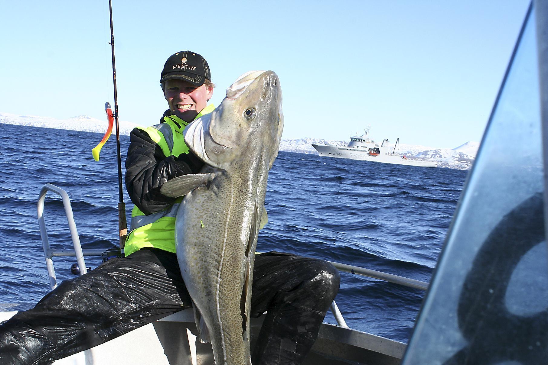 De skrei is weer in IJmuiden. De kabeljauwliefhebber verheugt zich op de 'vis der liefde' die ook een probaat middel zou zijn tegen corona