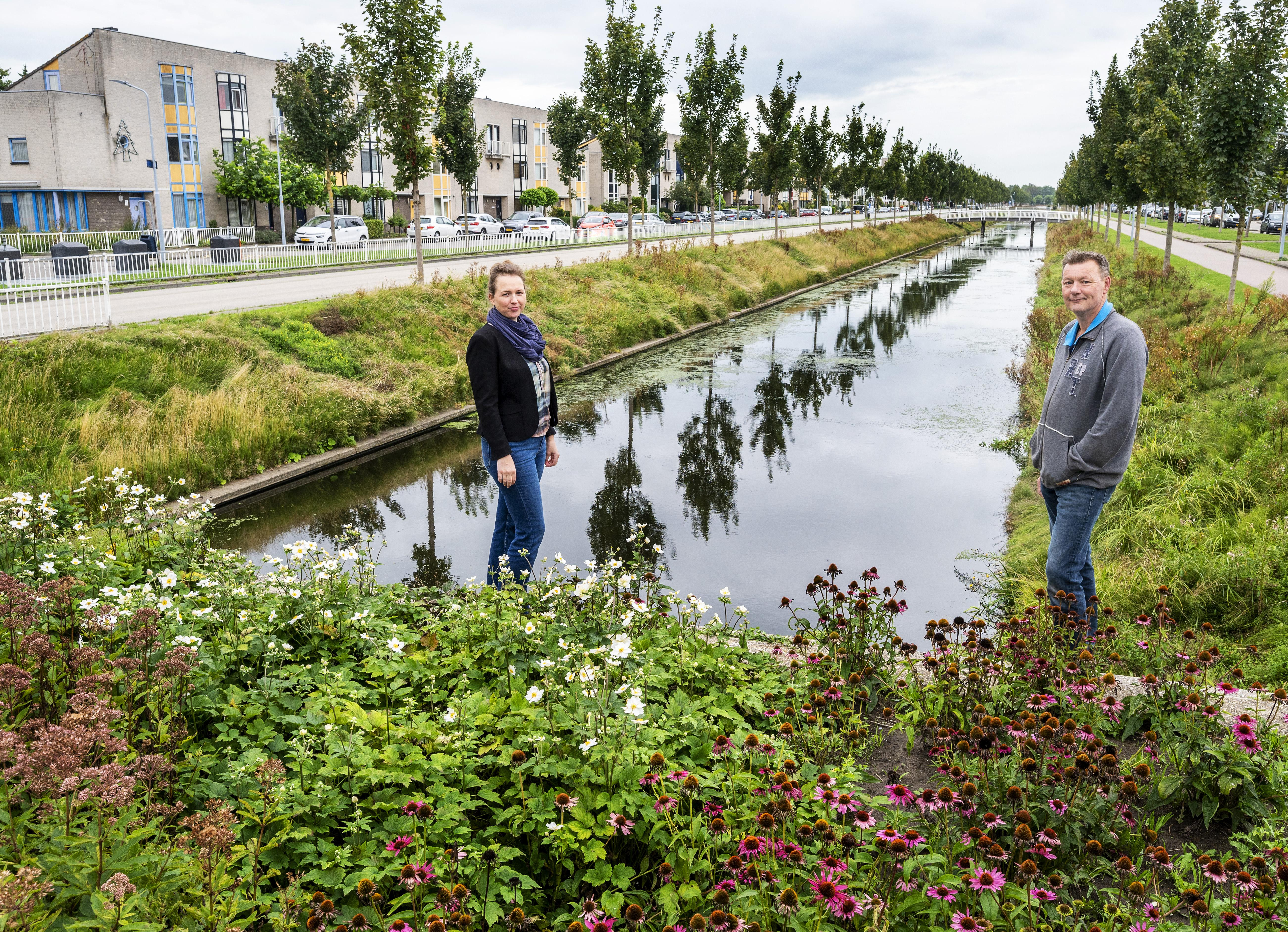 De Hoofddorpse wijk Toolenburg (30) was destijds net zo groot als heel Nieuw-Vennep