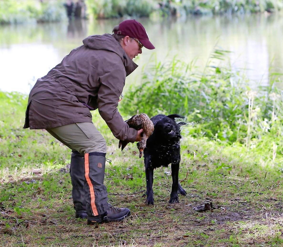 Verzoek om niet te komen kijken naar examen jachthonden in 't Streekbos