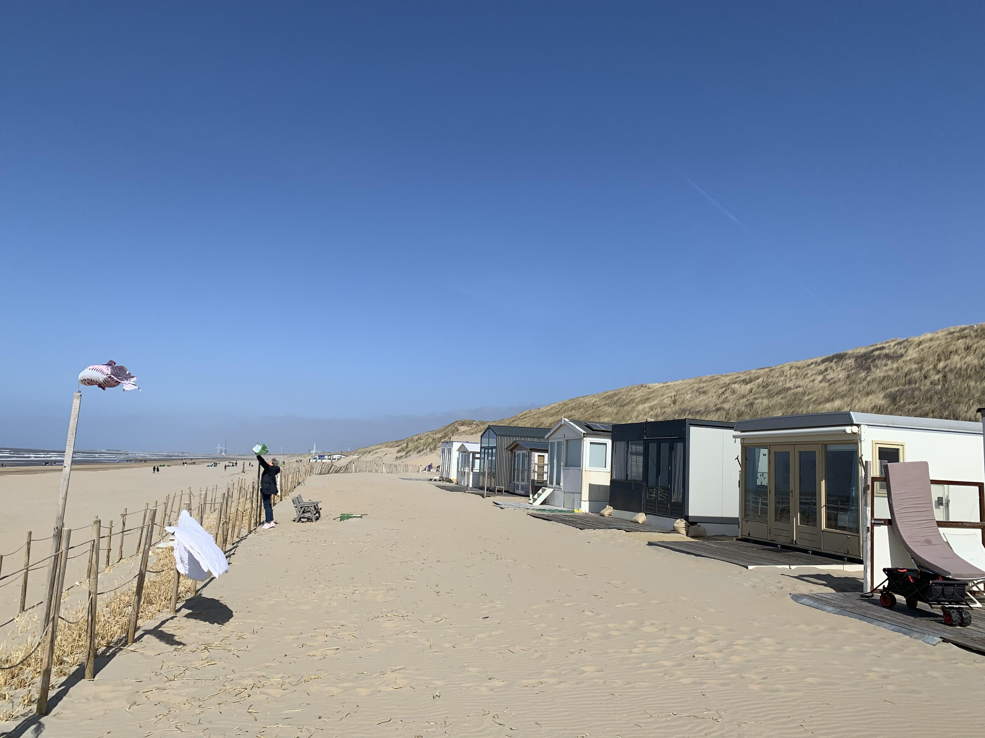 De Zeemeeuwen zijn weer als eersten op het Zandvoortse strand. 'Het is toch een beetje je strandfamilie'