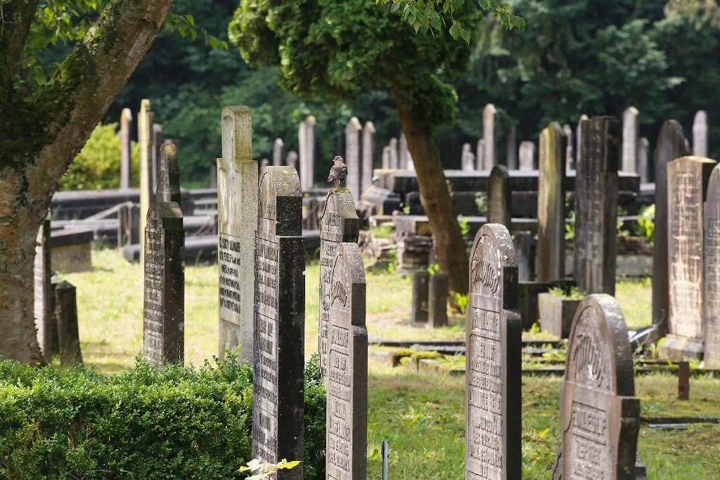 Kortere periode voor huren van graf in Zaanstad