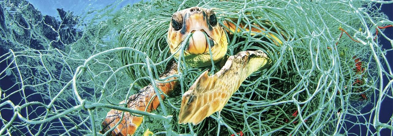 Je haalt plastic uit zee, brengt het aan land in Den Helder en gebruikt het daar om waterstof te produceren. Win-win, toch? 'Weer een pilaar onder Den Helder waterstofstad'